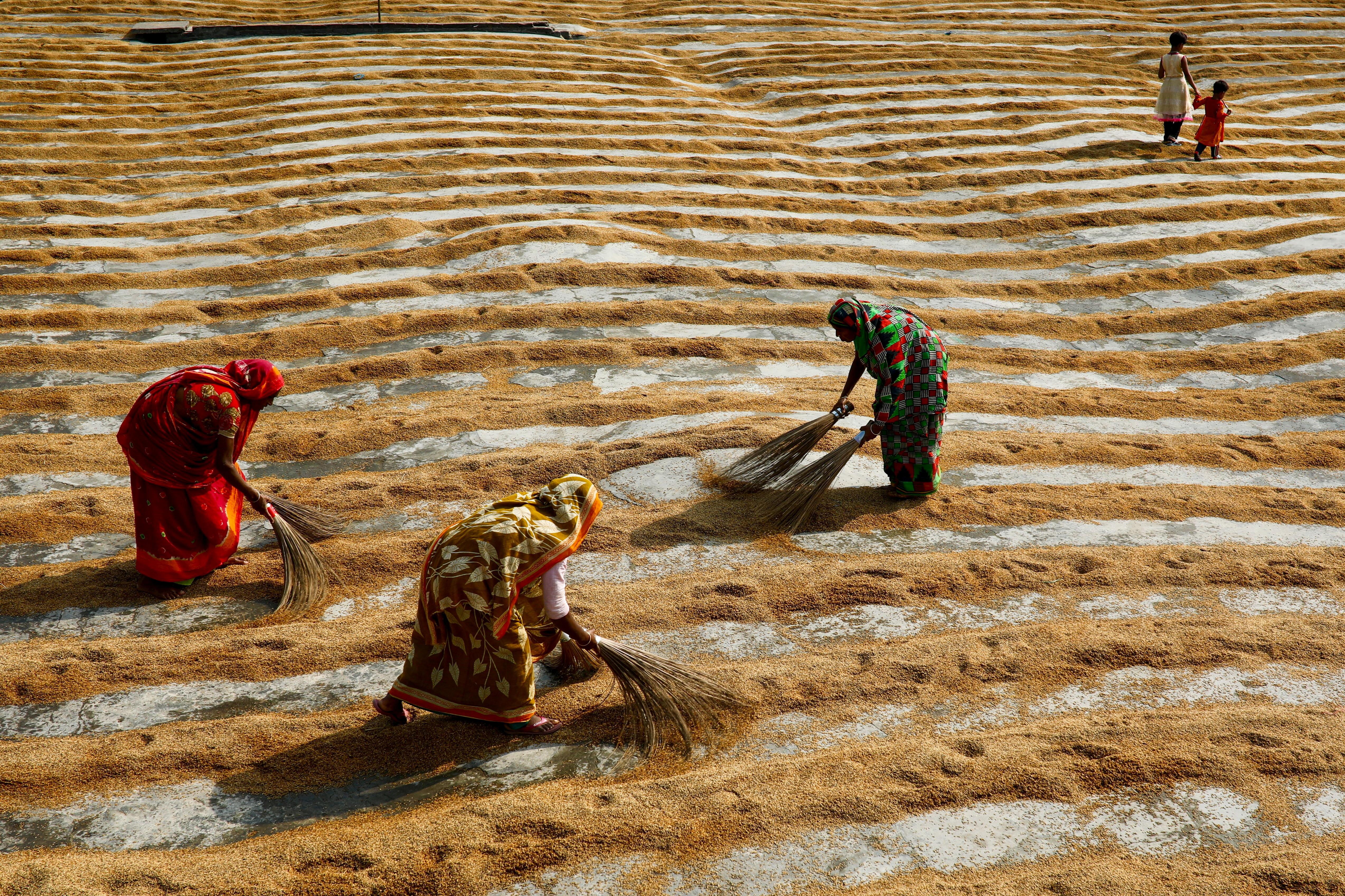 Women work in a rice processing mill in Munshiganj, Bangladesh