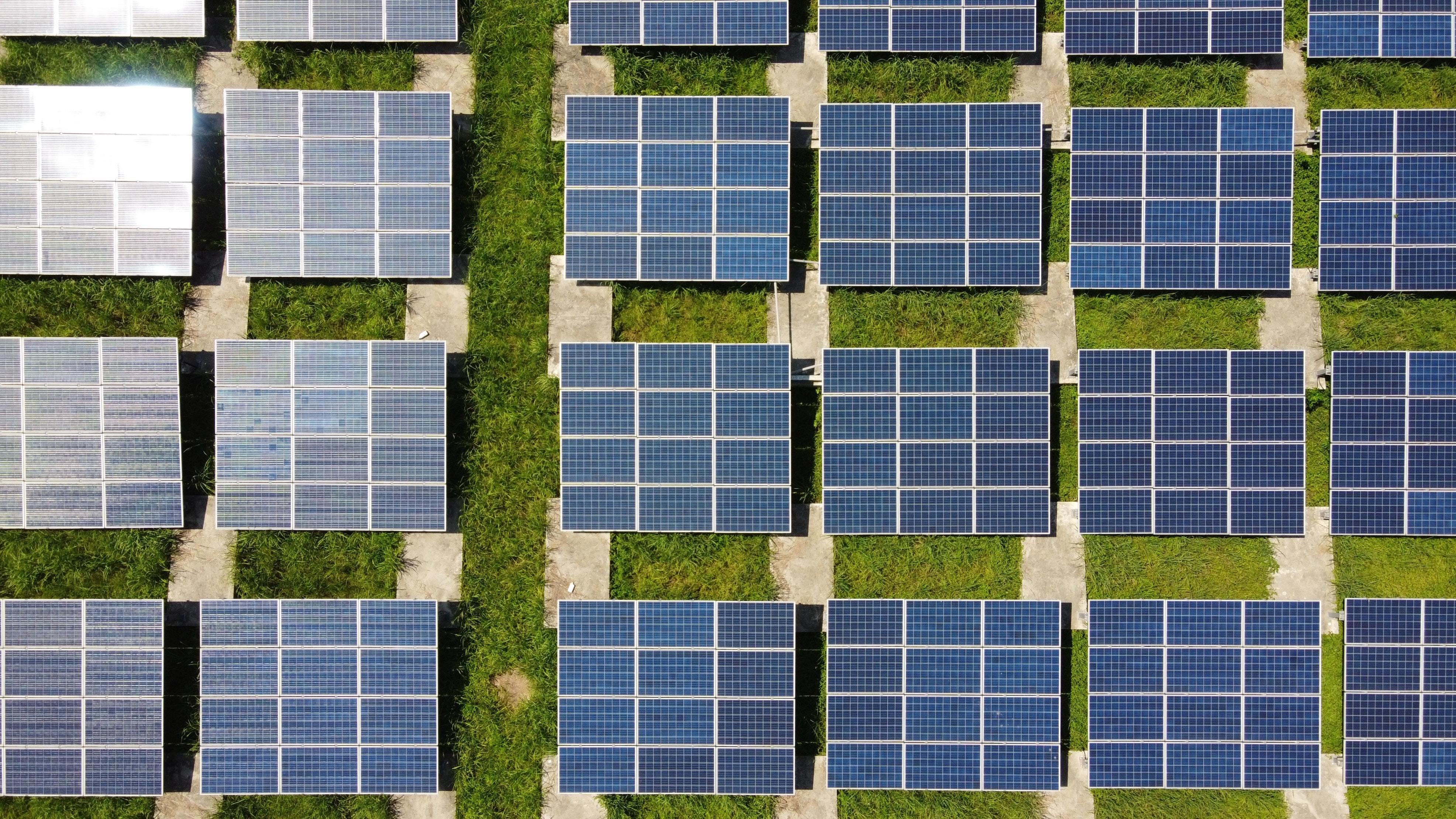 Overhead shot of solar panels, green grass, sun.