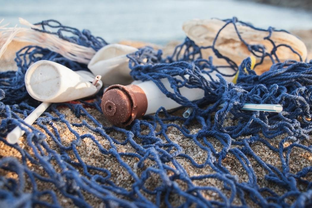 Plastic waste found on a beach can increase internal temperatures and threaten marine life.