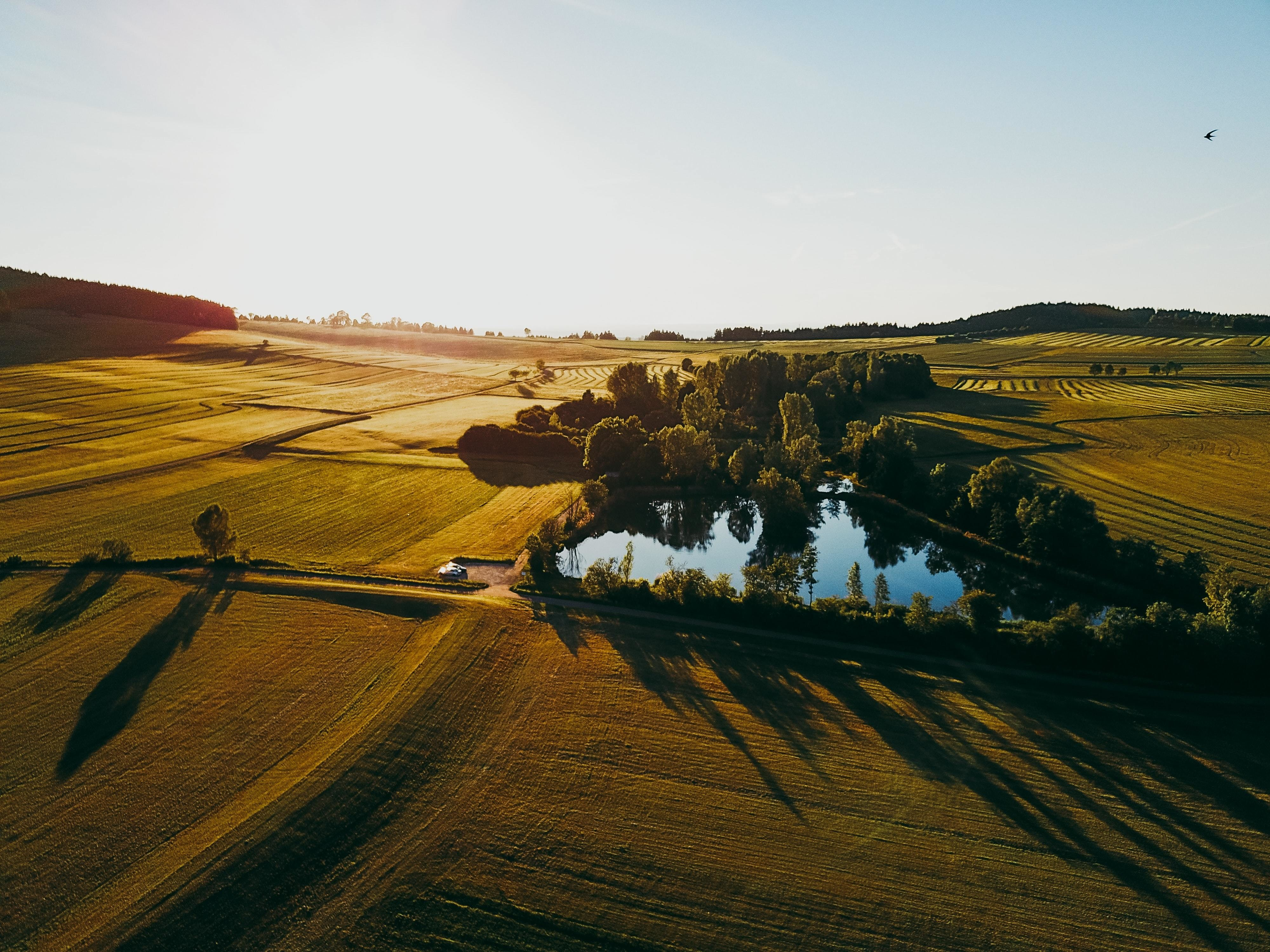 An image of a rolling field with trees surrounding a pond