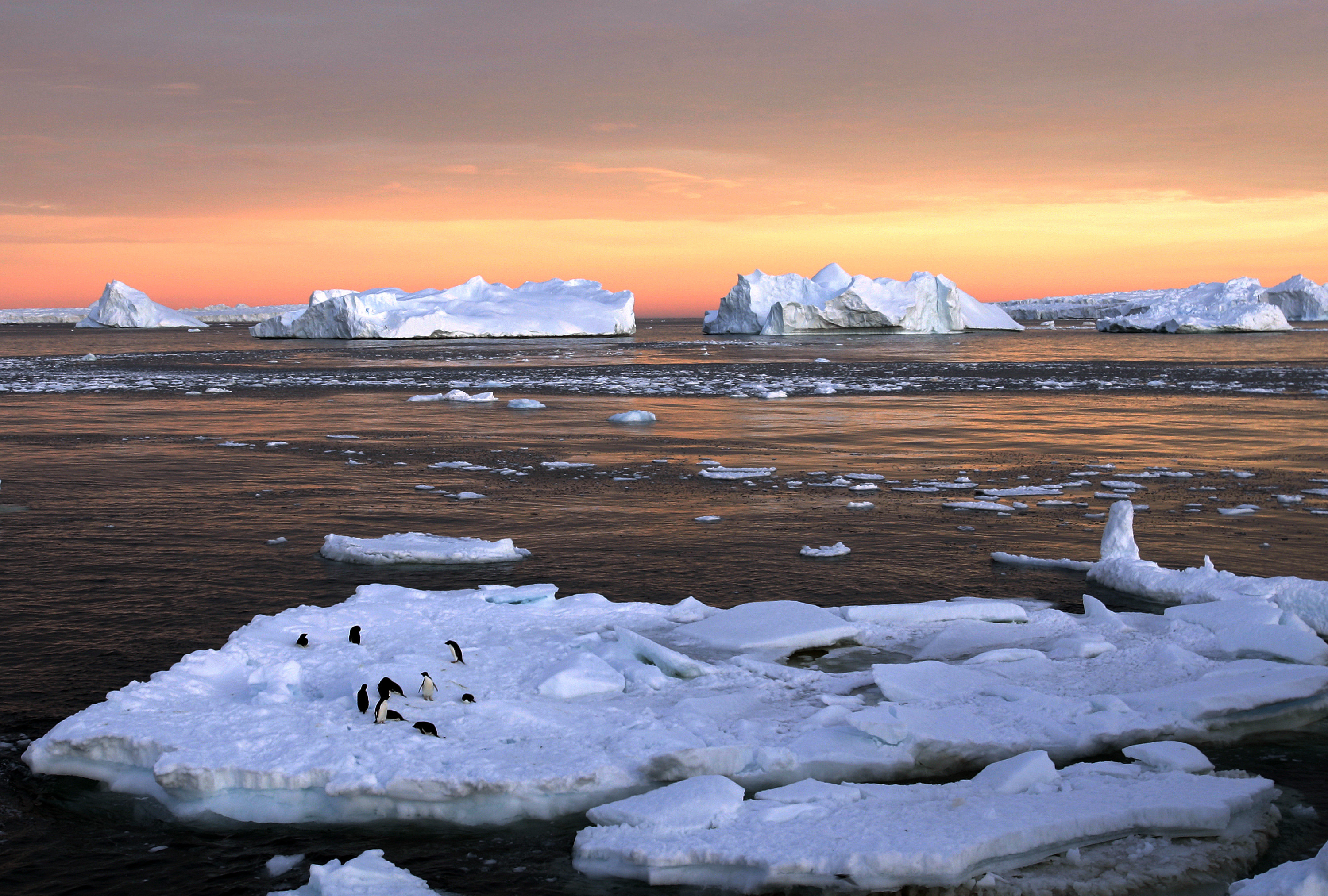 Icebergs in the ocean are shown against the back drop of an organ sky.