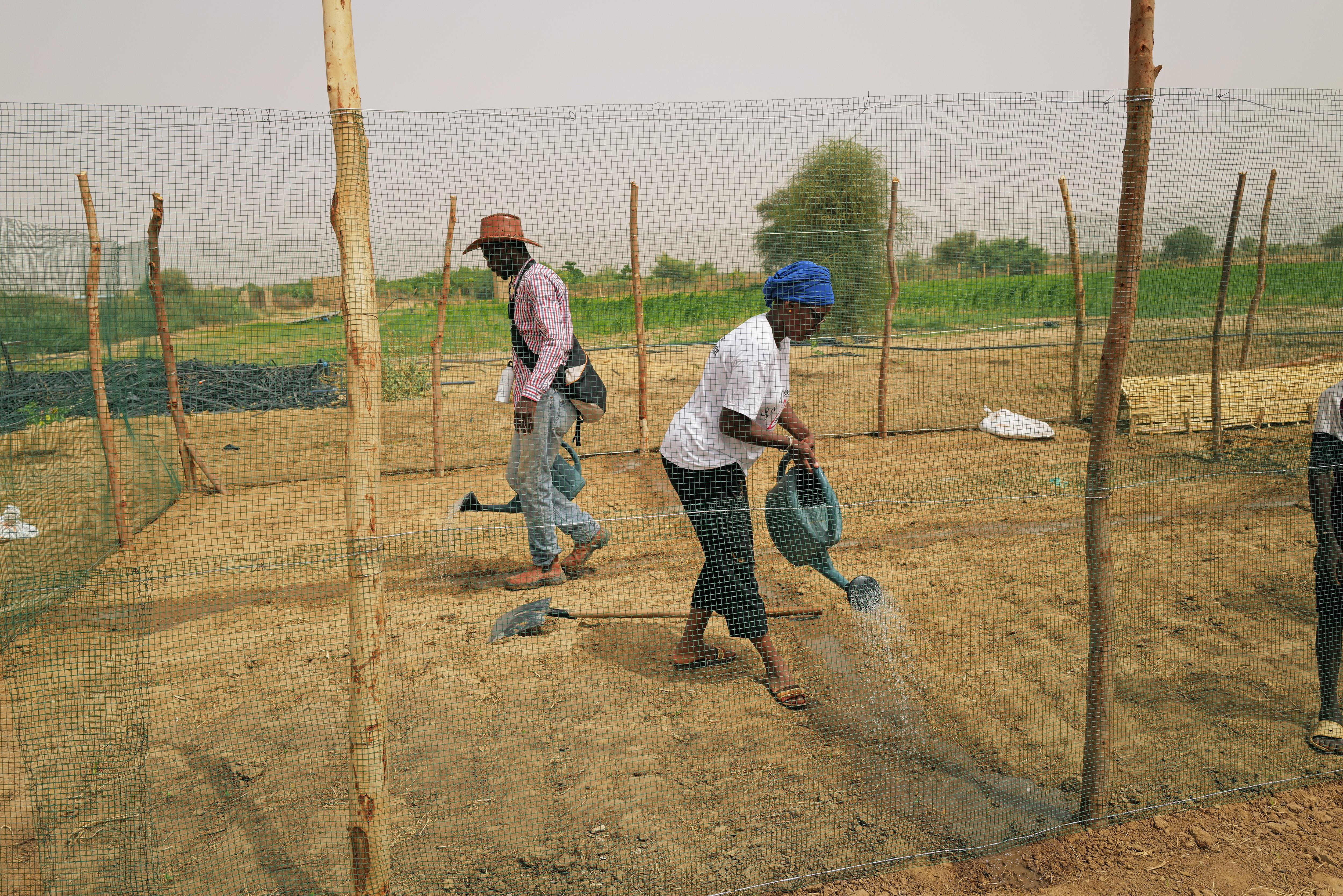 """Amadou Bathili, 50, a trainer who teaches how to build Tolou Keur gardens through the Tolou Keur programme, prepares a chicken cage at a newly built Tolou Keur garden in Boki Diawe department of Podor region, in an area which is part of the Great Green Wall of the Sahara and the Sahel area, in Senegal, July 10, 2021. Gardens known as 'Tolou Keur' hold plants and trees resistant to hot, dry climates, and are planted with circular beds that allow roots to grow inwards, trapping liquids and bacteria and improving water retention and composting. REUTERS/Zohra Bensemra     SEARCH """"BENSEMRA REFORESTATION"""" FOR THIS STORY. SEARCH """"WIDER IMAGE"""" FOR ALL STORIES - RC2MHO93W3NP"""