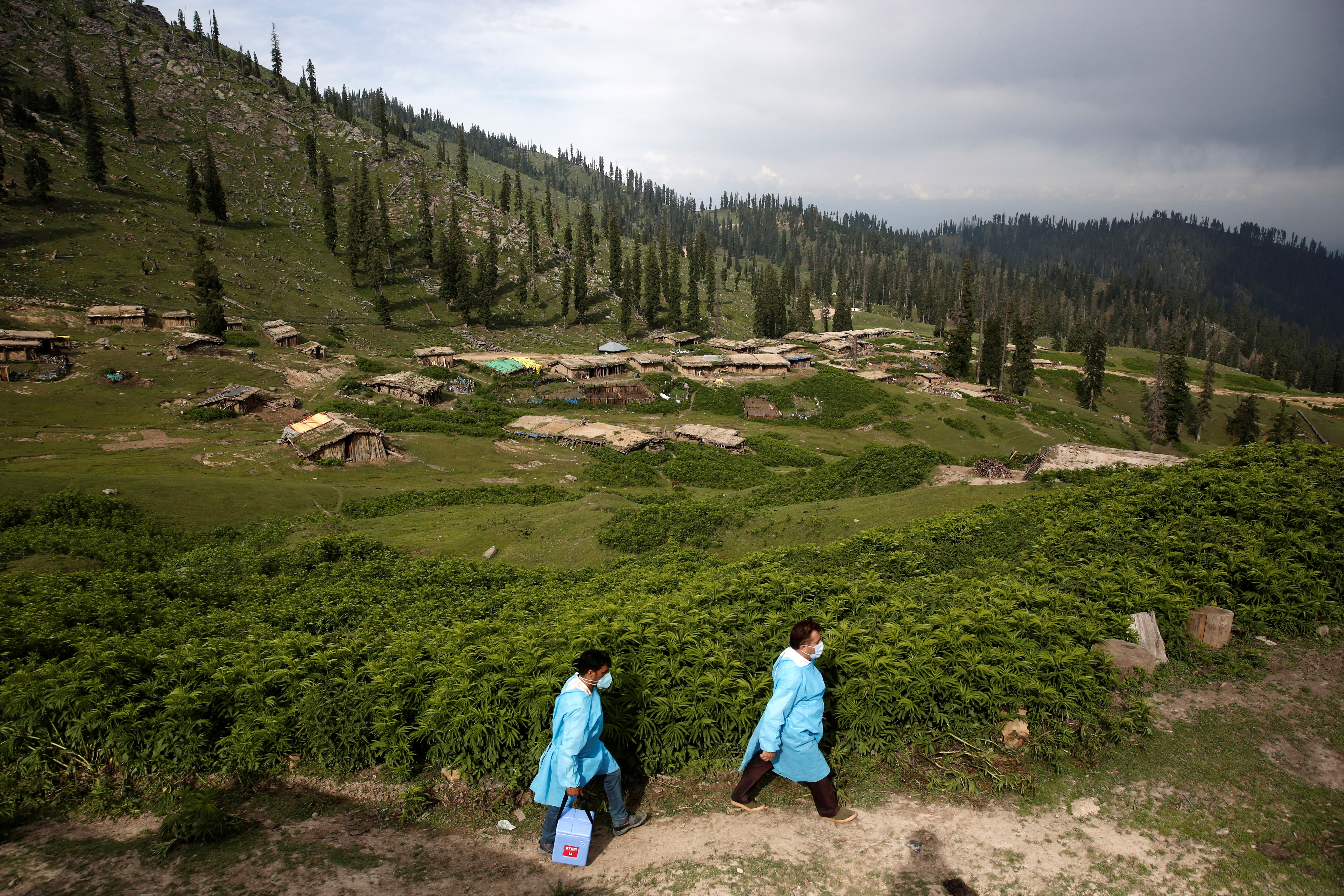 Healthcare workers arrive to vaccinate shepherds with COVISHIELD, a coronavirus disease (COVID-19) vaccine manufactured by Serum Institute of India, during a vaccination drive at Tosa Maidan in central Kashmir's Budgam district on June 21, 2021. REUTERS/Danish Ismail - RC225O9BVO98