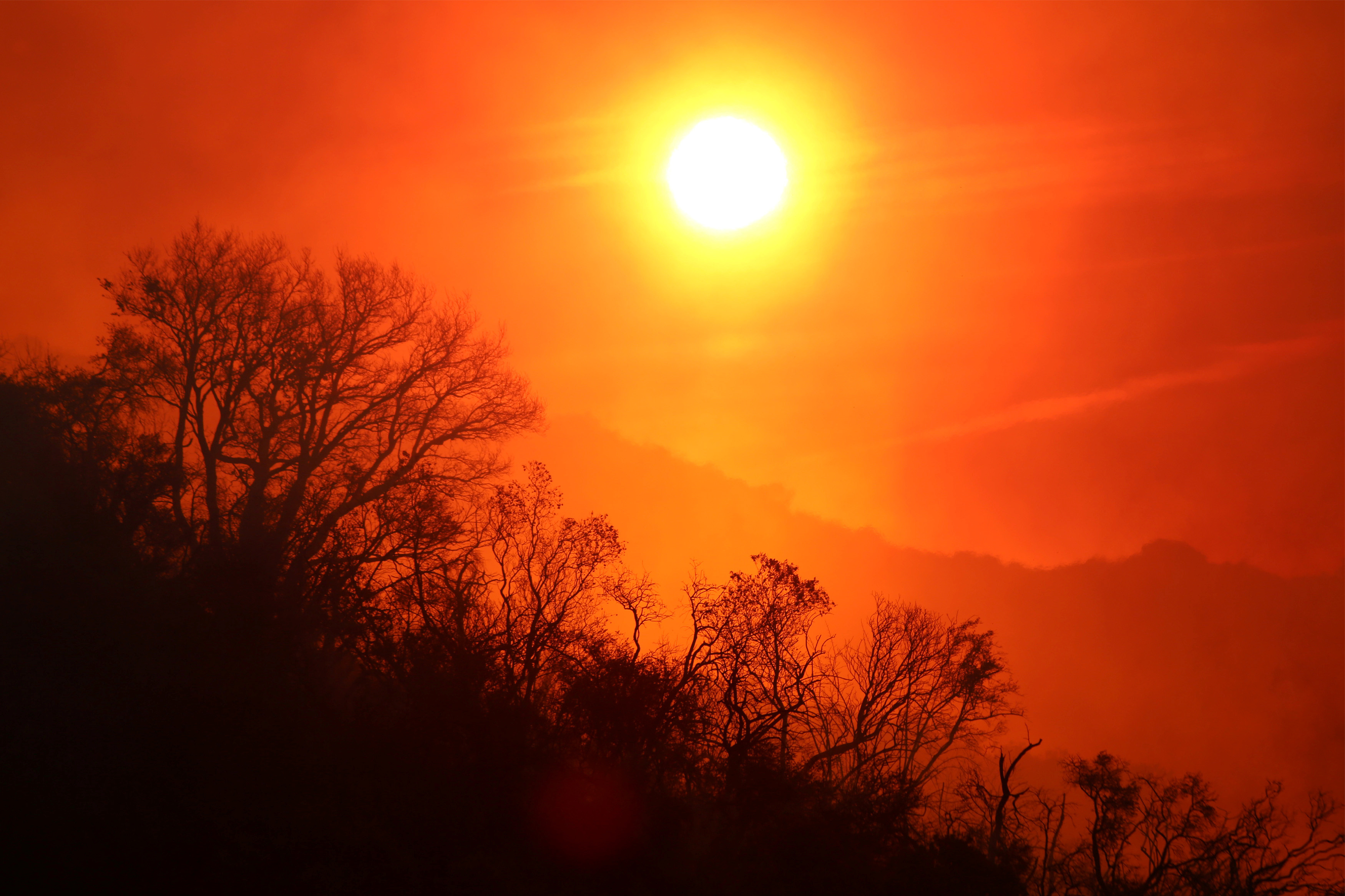 The sun rises over a smoldering landscape that was burned by a wildfire dubbed the Cave Fire, burning in the hills of Santa Barbara, California, U.S., November 26, 2019. REUTERS/David McNew - RC27JD90RMND