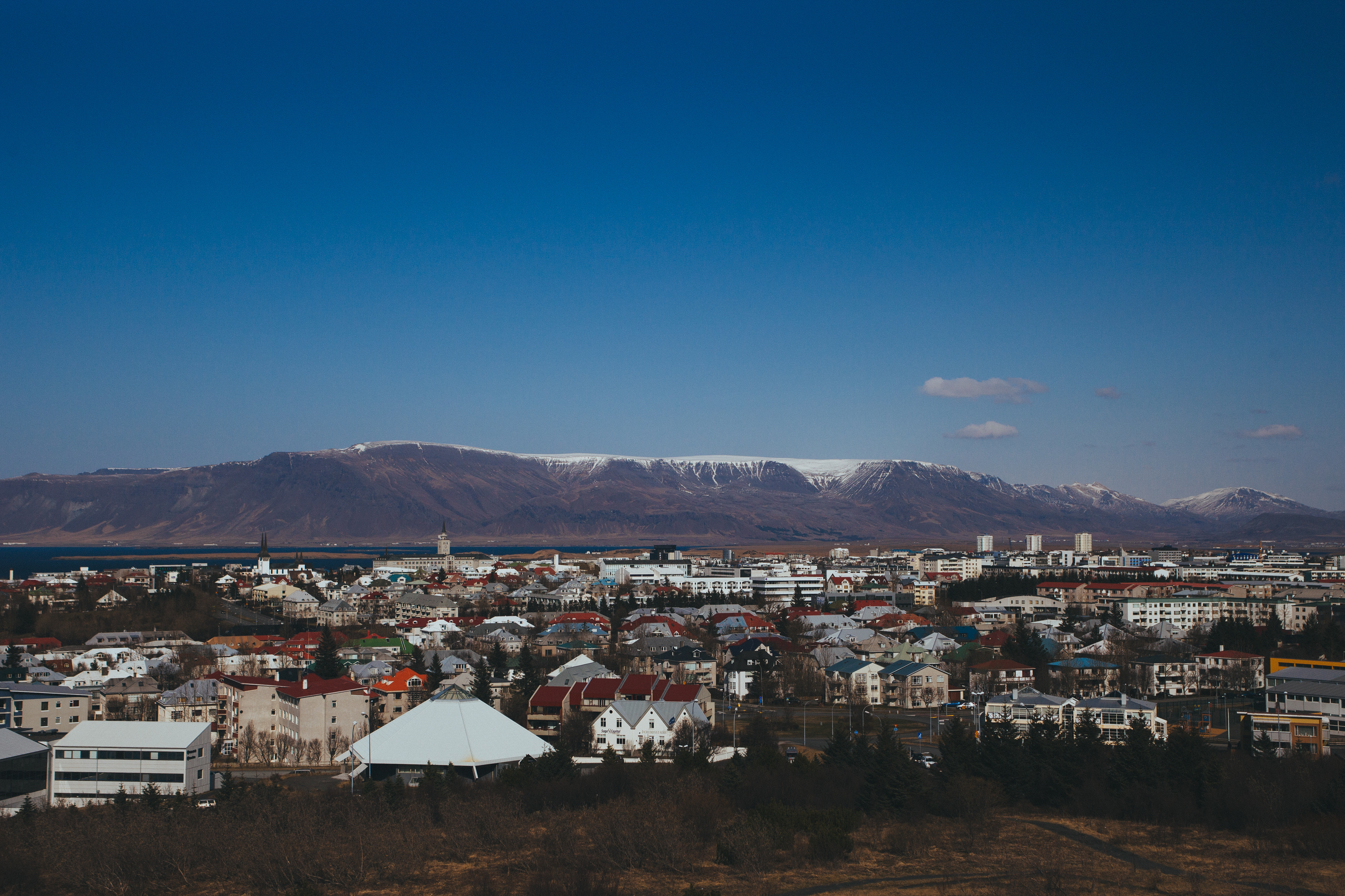Iceland tested over 30,000 people for COVID antibodies