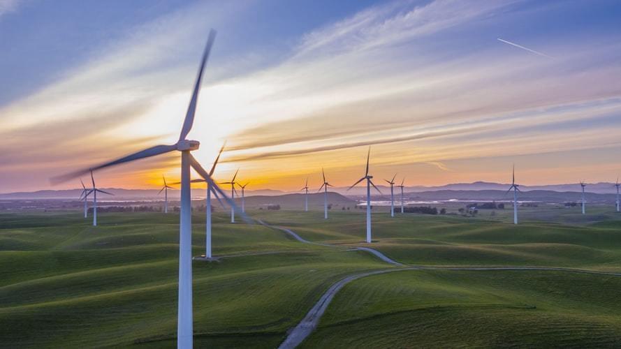 Wind turbines pictured in a field.