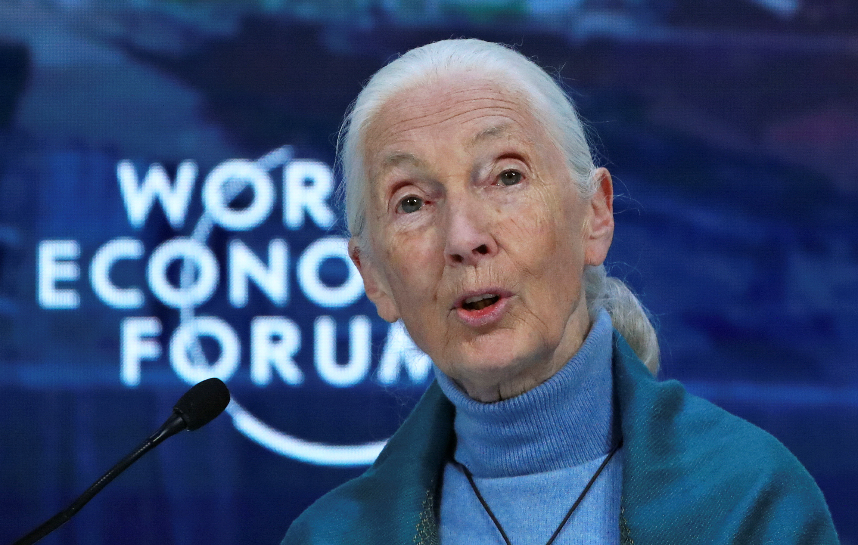 British primatologist, ethologist and anthropologist Jane Goodall attends a session at the 50th World Economic Forum (WEF) annual meeting in Davos, Switzerland, January 22, 2020. REUTERS/Denis Balibouse - RC21LE9CLFA5