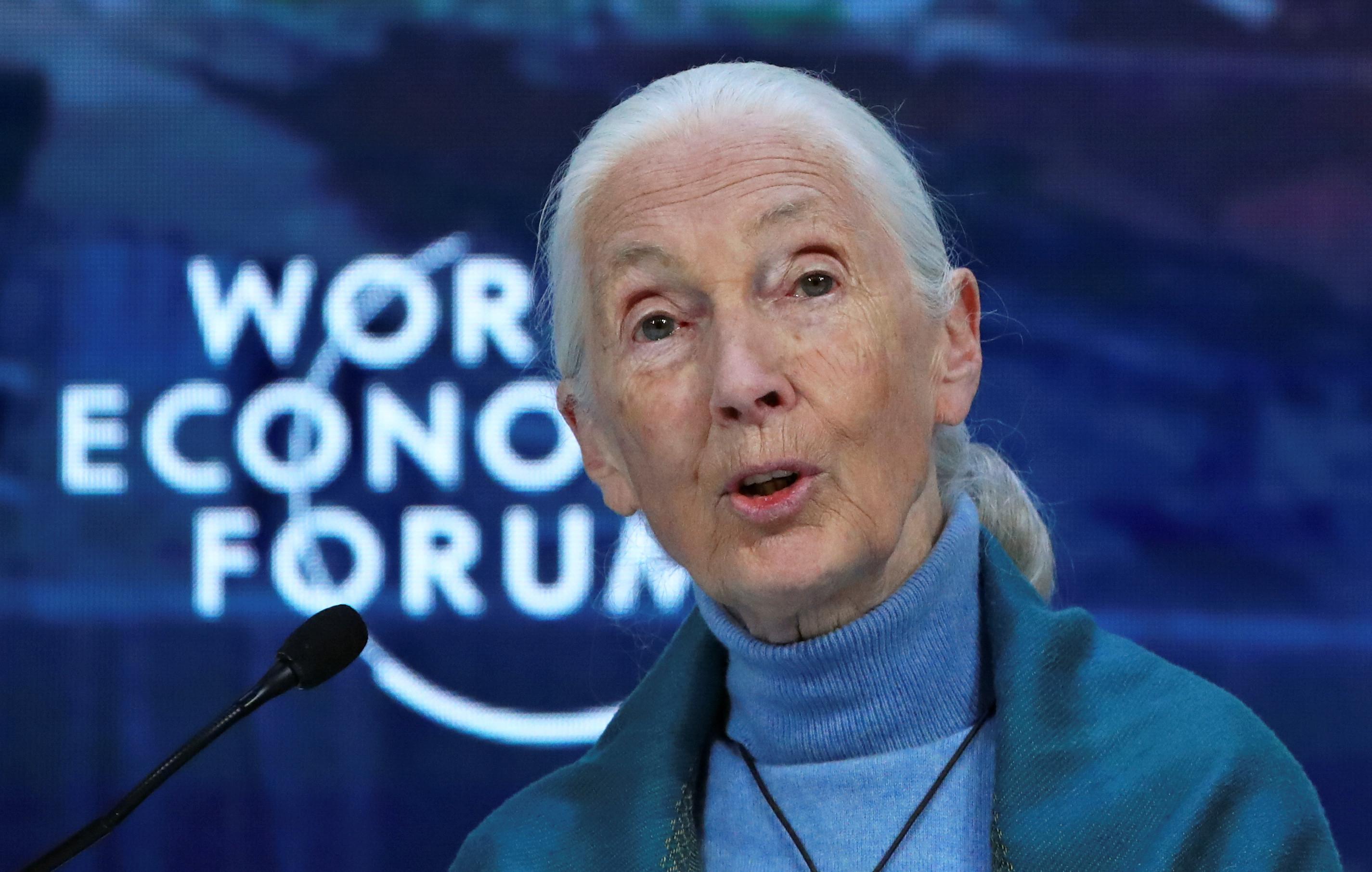 British primatologist, ethologist and anthropologist Jane Goodall has won the Templeton Prize 2021.