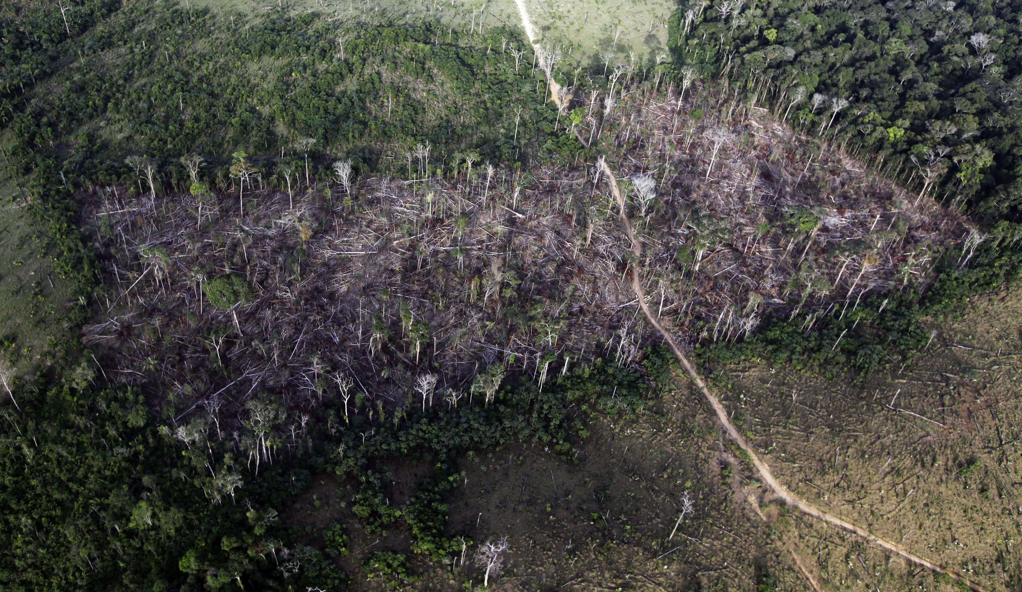 An aerial view shows illegal deforestation close to the Amazonia National Park in Itaituba, state of Para May 25, 2012. In the 19 months since Brazil's President Dilma Rousseff took office, longstanding rules that curtail deforestation and protect millions of square kilometers of watershed have been rolled back. She issued an executive order to shrink or repurpose seven protected woodlands, making way for hydroelectric dams and other infrastructure projects, and to legalize settlements by farmers and miners. Picture taken May 25, 2012. To match Special Report BRAZIL-ENVIRONMENT/BACKSLIDE    REUTERS/Nacho Doce (BRAZIL - Tags: POLITICS ENVIRONMENT BUSINESS) - GM2E88317OM01