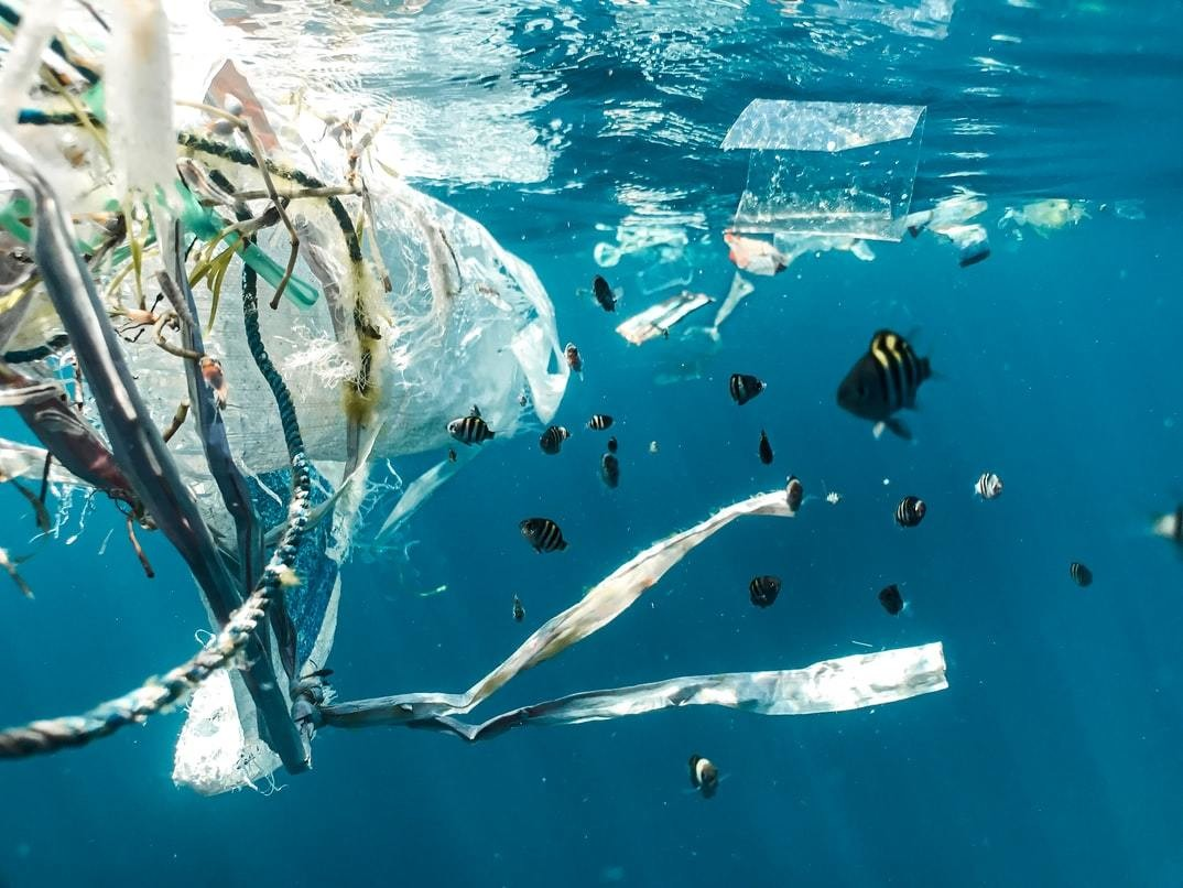 A plastic bag is pictured in the Indonesian sea.