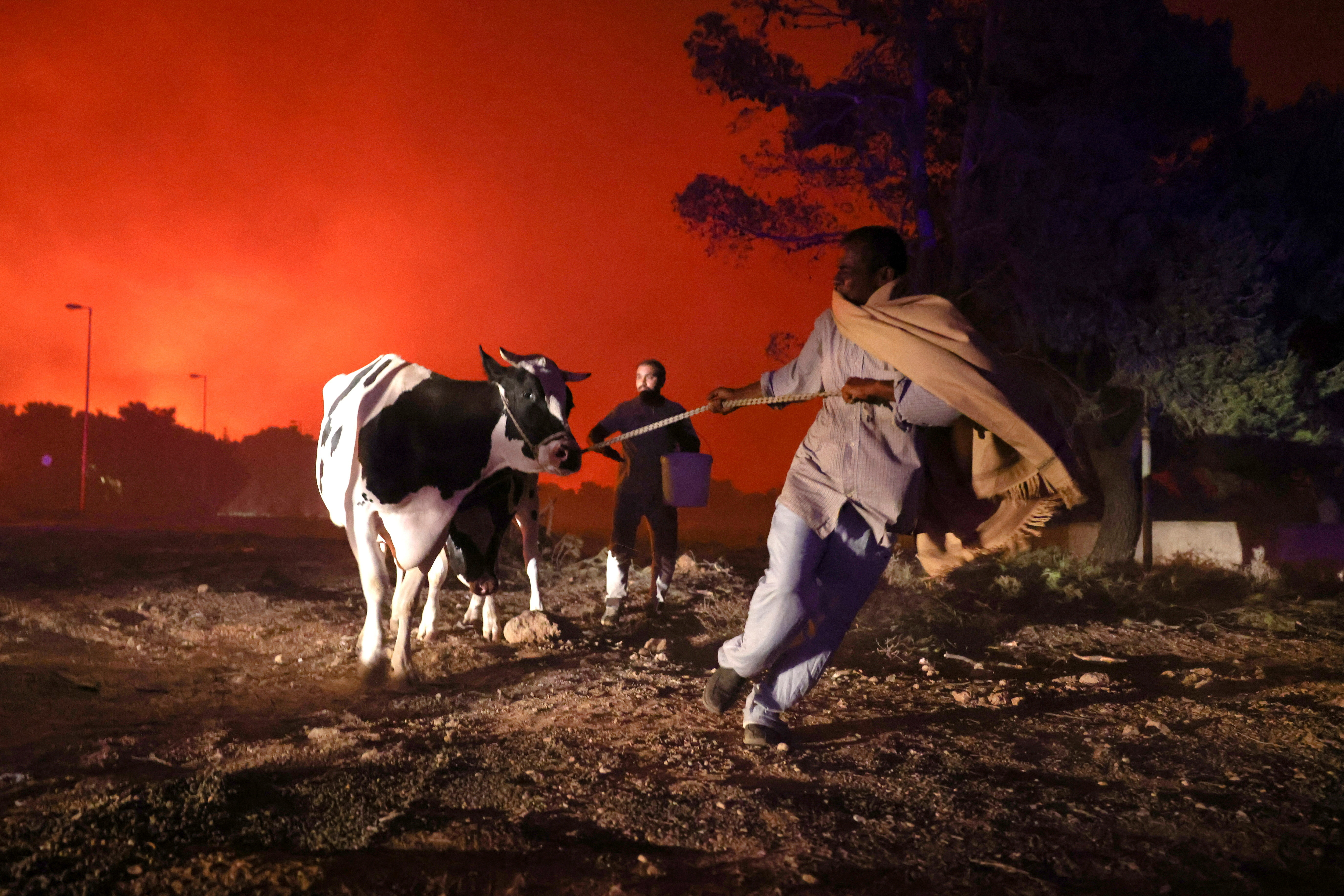 Locals evacuate the area with their animals as a wildfire rages in the suburb of Thrakomakedones, north of Athens, Greece, August 7, 2021.