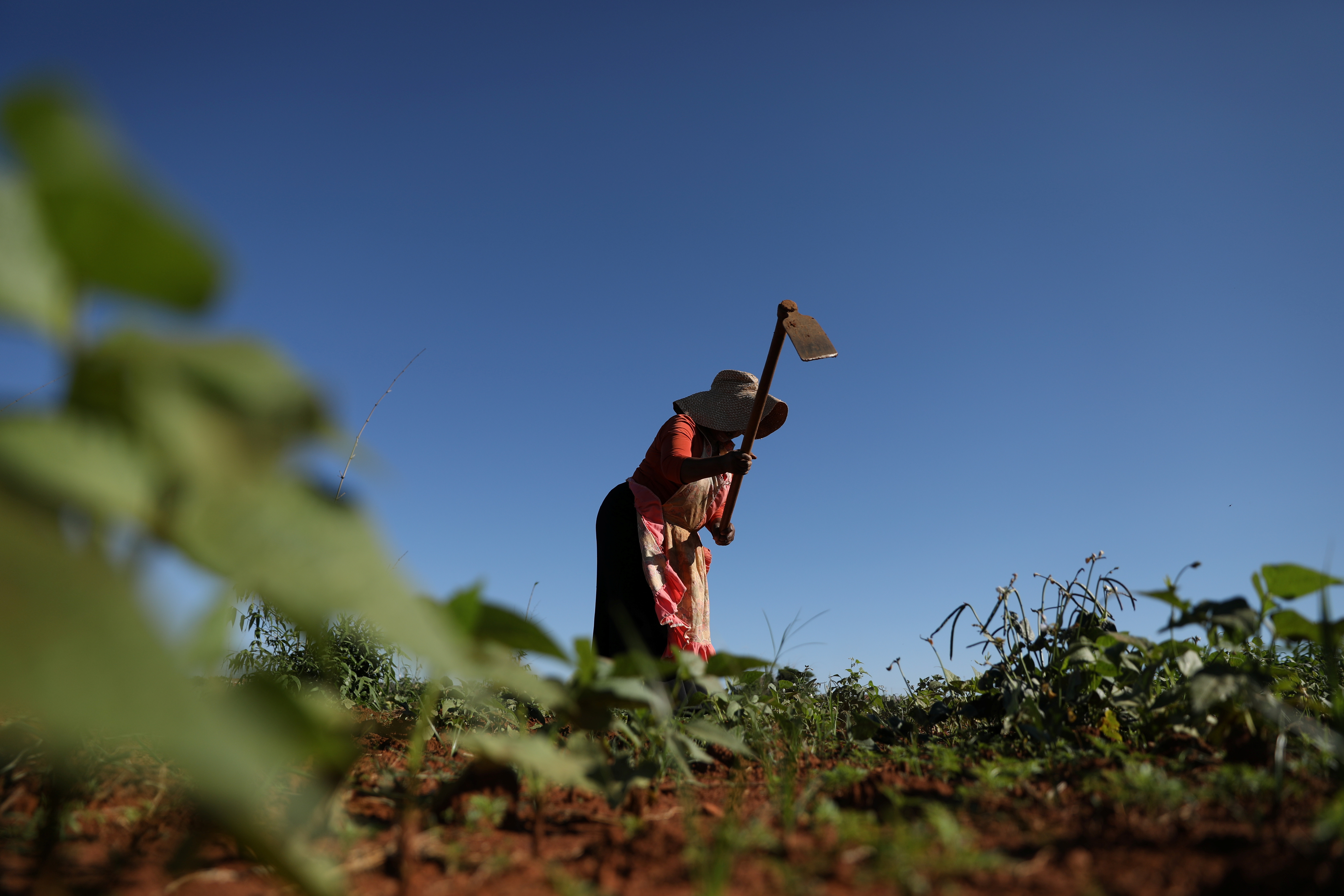 NobuthoThethani, a local farmer works the land at Lawley informal settlement in the south of Johannesburg, South Africa