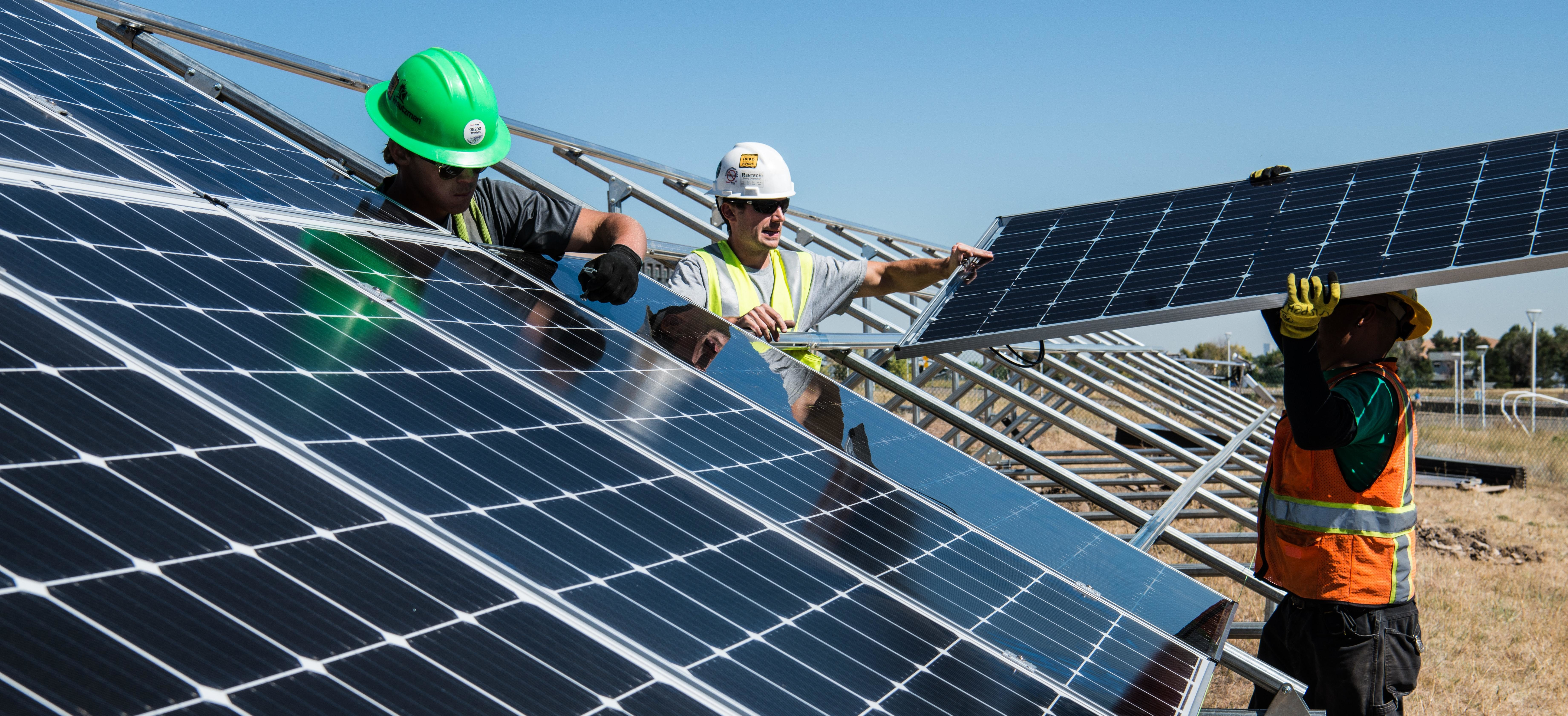workers fit solar panels into an open field