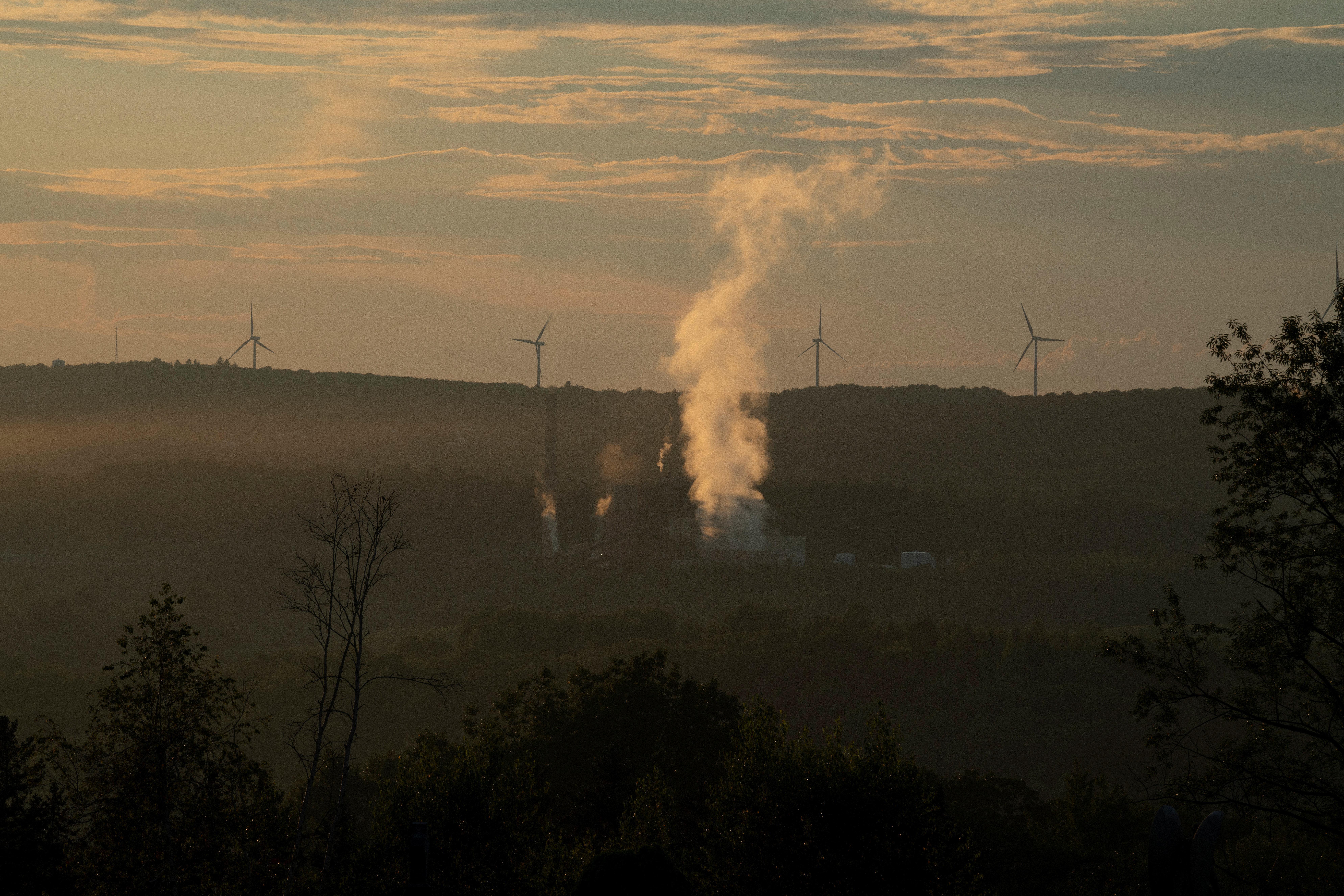 Steam rises from the Schuylkill Energy Resources power plant as wind turbines spin in the background in Mahanoy City, Pennsylvannia, U.S., August 25, 2020. Picture taken August 25, 2020.  REUTERS/Dane Rhys - RC2AWI9OWY12