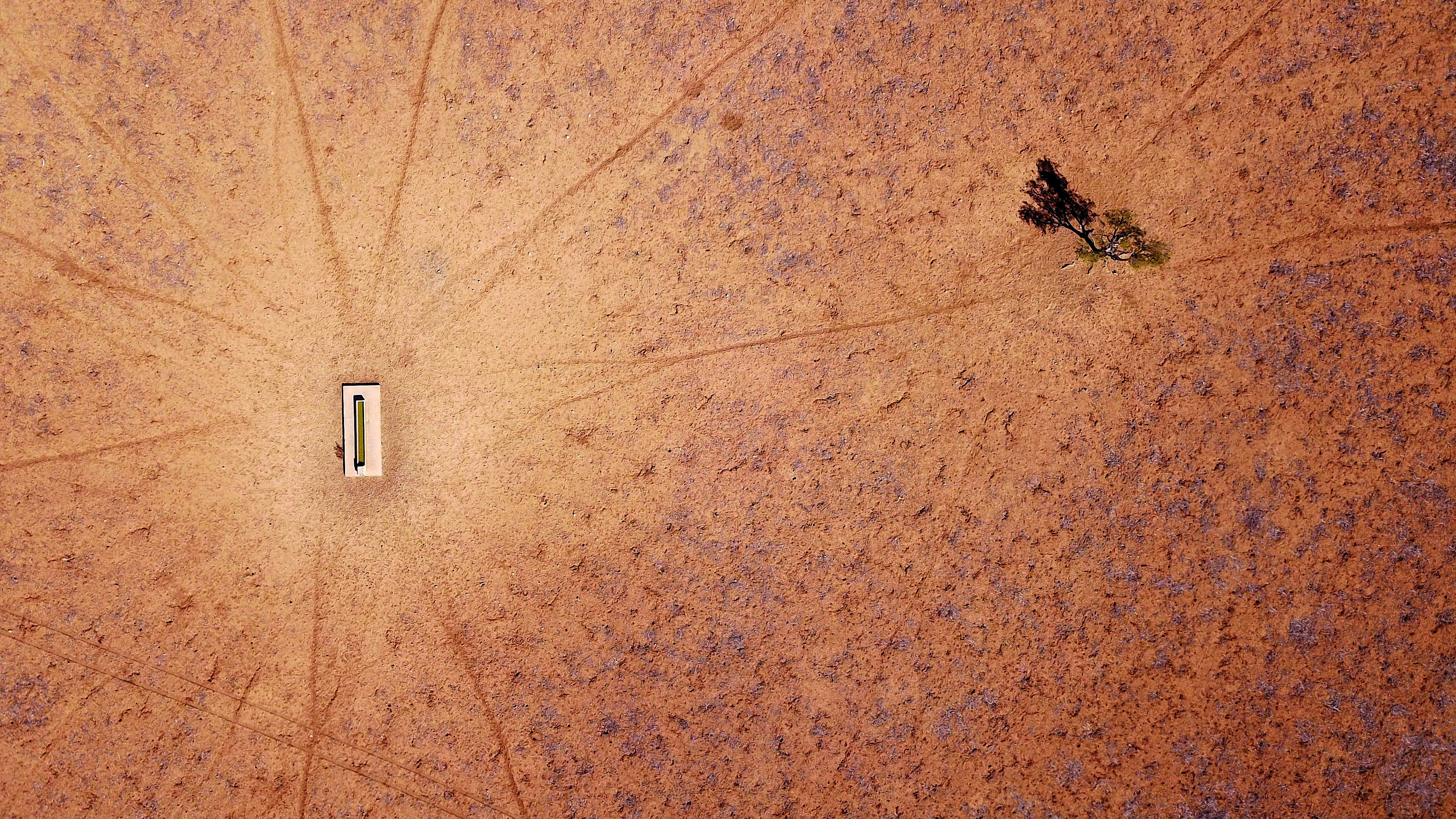 "A lone tree stands near a water trough in a drought-affected paddock on Jimmie and May McKeown's property located on the outskirts of town of Walgett, in New South Wales, Australia, July 20, 2018. REUTERS/David Gray    SEARCH ""AUSTRALIA DROUGHT"" FOR THIS STORY. SEARCH ""WIDER IMAGE"" FOR ALL STORIES.  TPX IMAGES OF THE DAY - RC187A02E660"