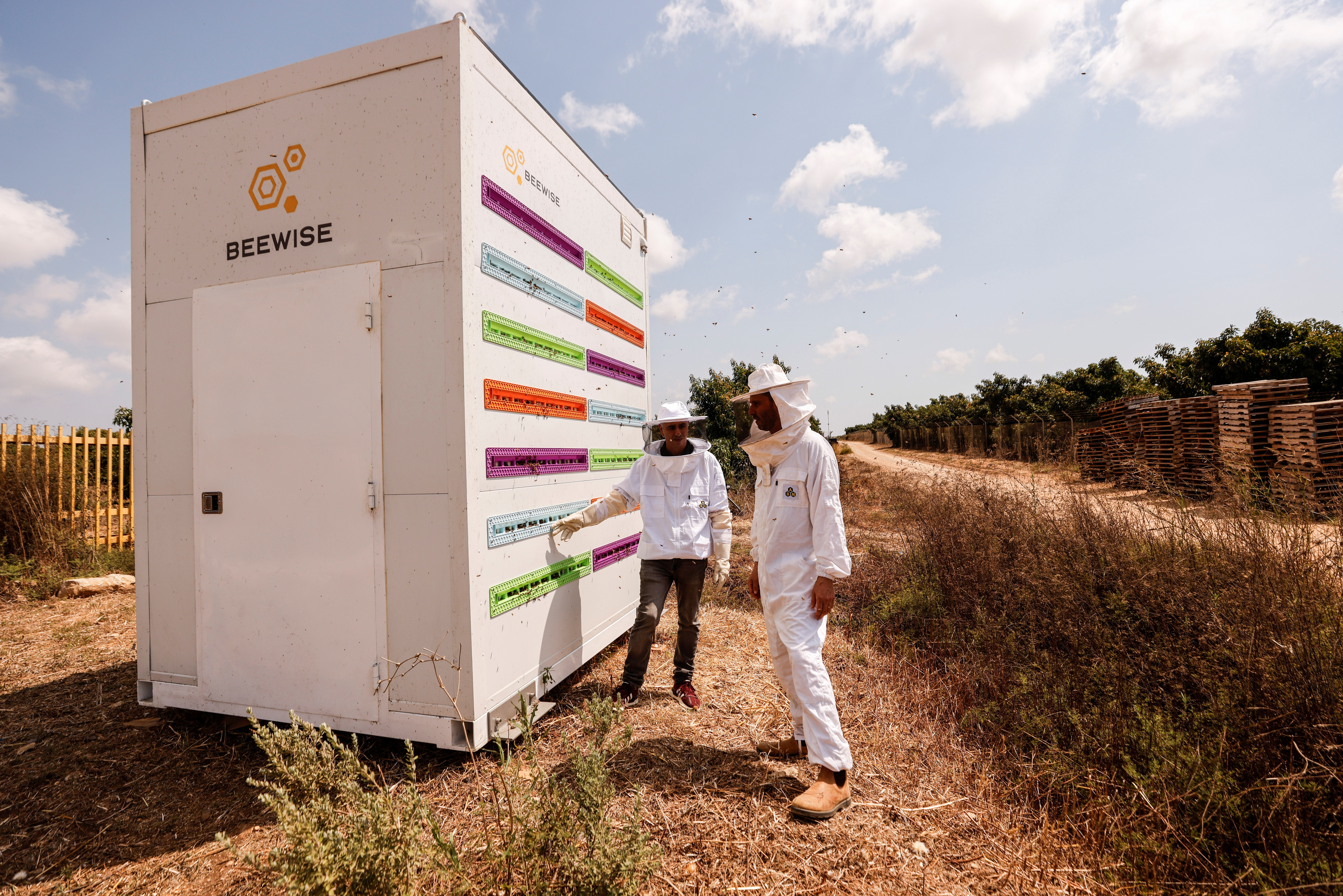 CEO Saar Safra and Hallel Schreier, head of research, stand next to a robotic beehive developed by the Israeli startup company Beewise in Beit Haemek, Israel