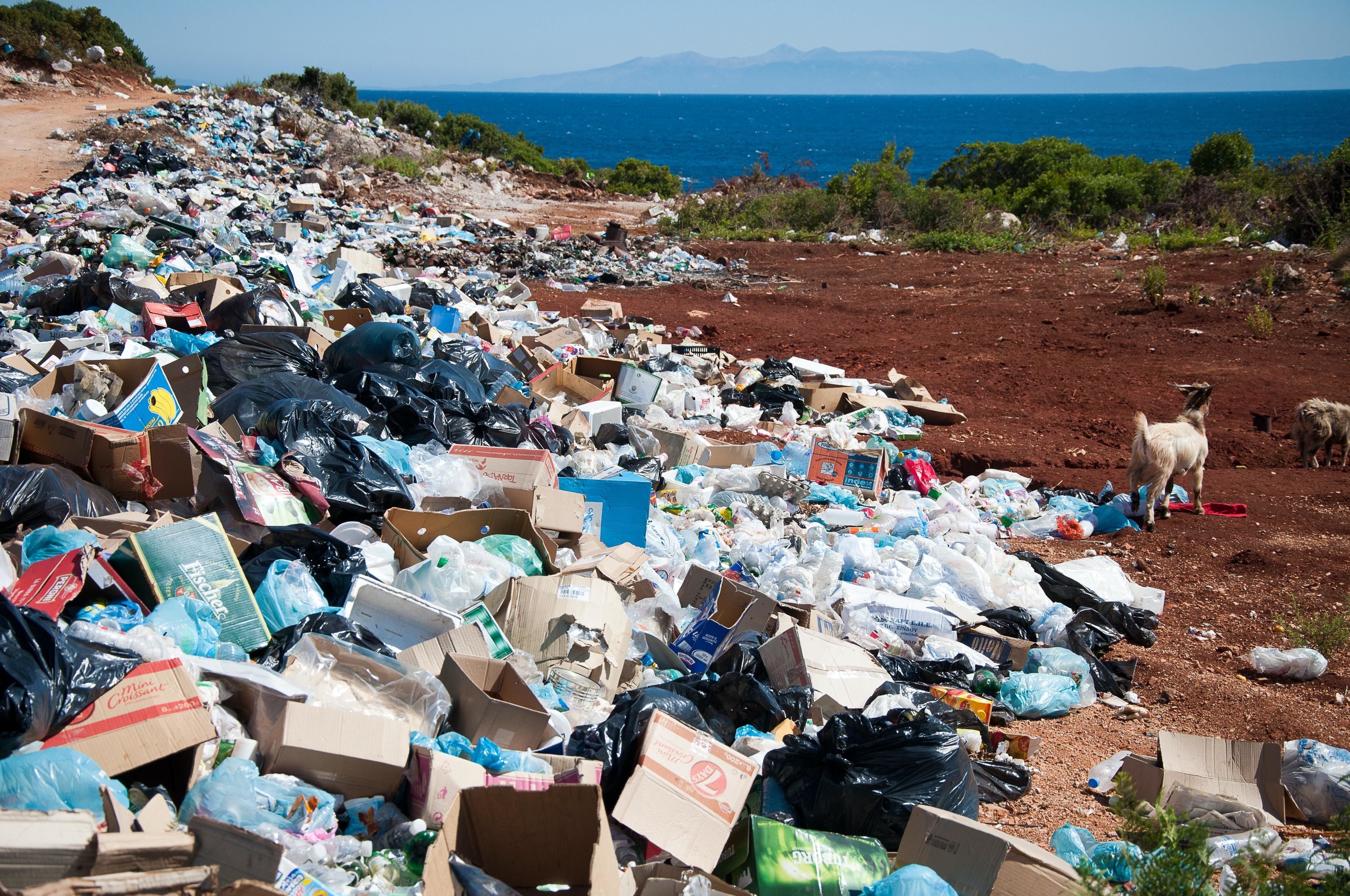 plastic waste, shown here, is a major global problem
