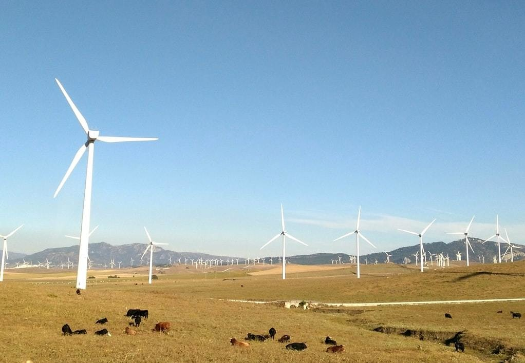 Wind farms pictured in Seville, Spain