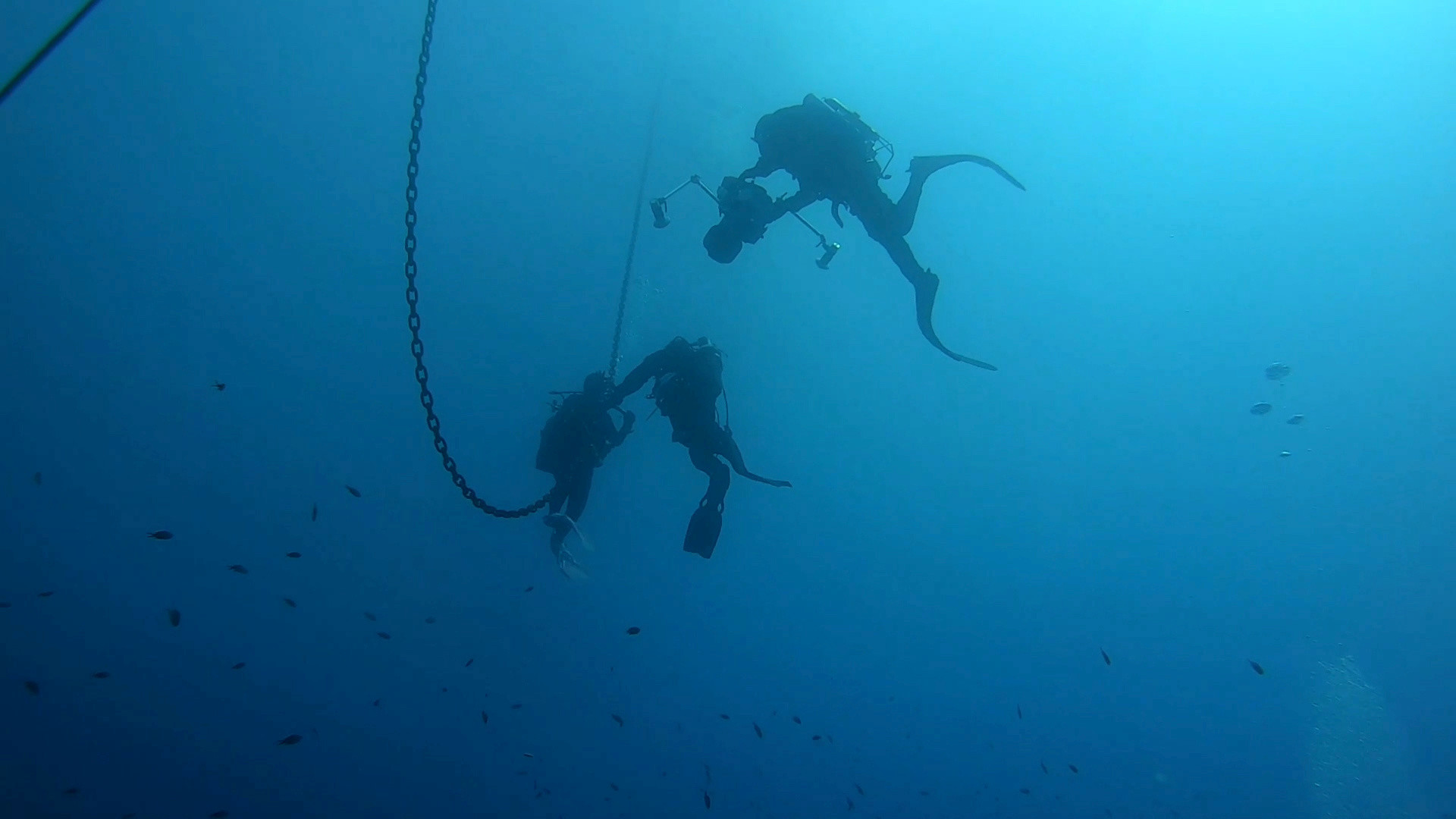 Italian Coast Guard divers use an underwater camera at sea off the coast of Lazio during a study on the health of Italy's seas and improvements to marine life due to a lack of human activities during the coronavirus disease (COVID-19) lockdown, in this still picture taken from video, April 29, 2020. Picture taken April 29, 2020. Italian Coast Guard/Handout via REUTERS THIS IMAGE HAS BEEN SUPPLIED BY A THIRD PARTY. MANDATORY CREDIT. - RC2MNH96KUWS