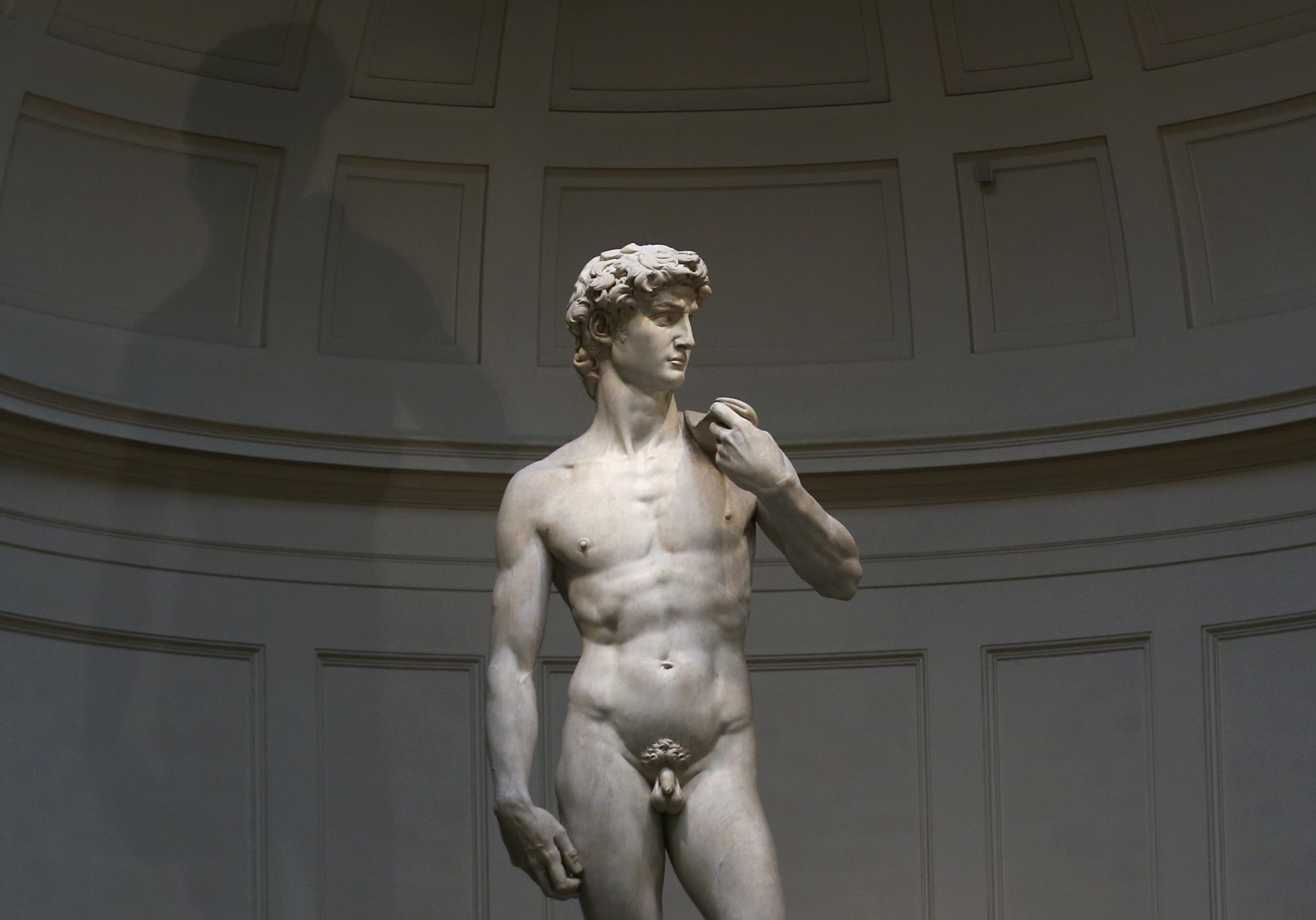 Michelangelo's statue of David is seen before a joint news conference by Italy's Prime Minister Matteo Renzi and Germany's Chancellor Angela Merkel at the Galleria dell'Accademia in Florence January 23, 2015. REUTERS/Alessandro Bianchi (ITALY - Tags: POLITICS SOCIETY) - GM1EB1N1EJA01