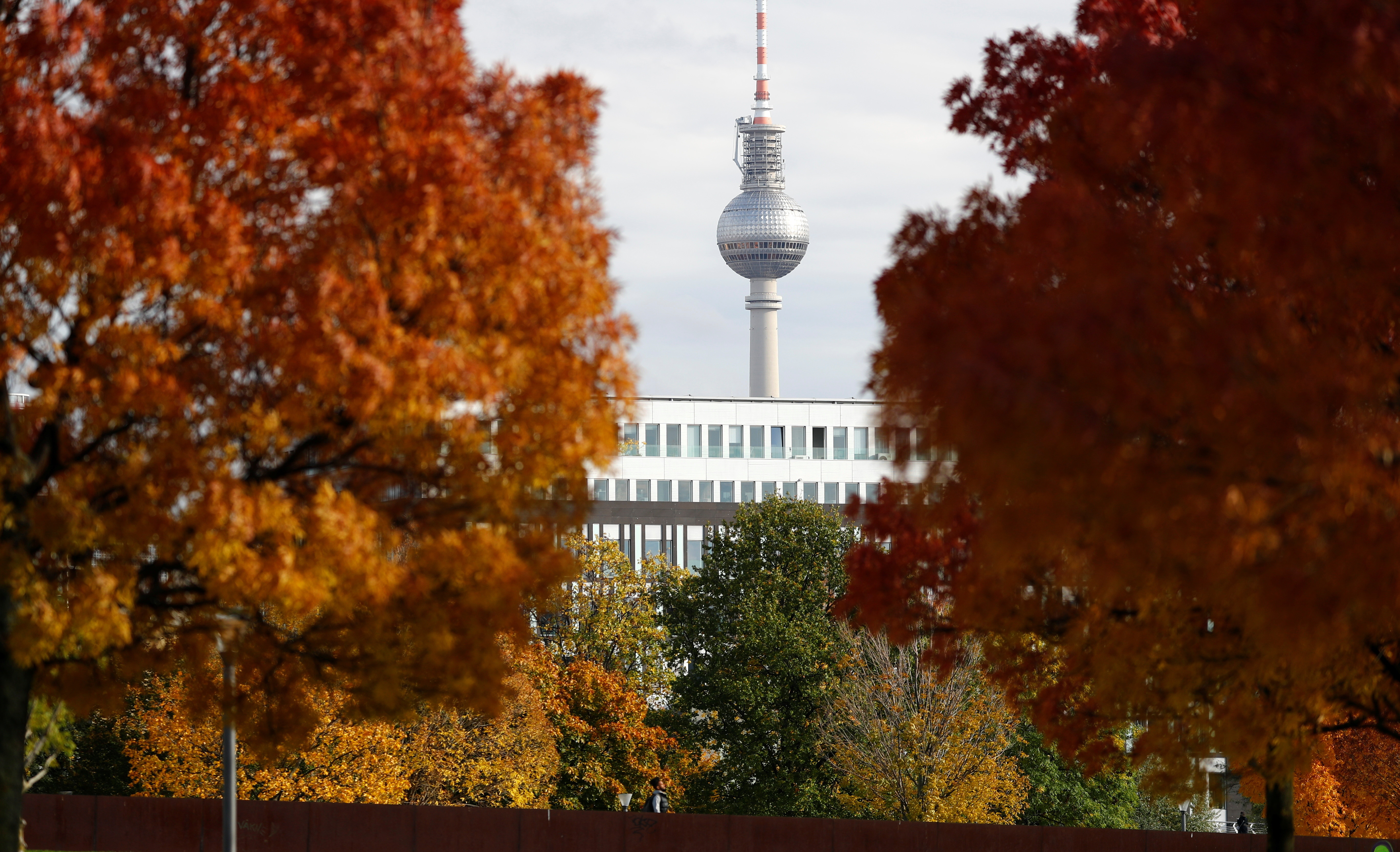 The television tower is seen through Autumn trees, in Berlin, Germany, October 27, 2020. REUTERS/Fabrizio Bensch - RC20RJ9VUOX9