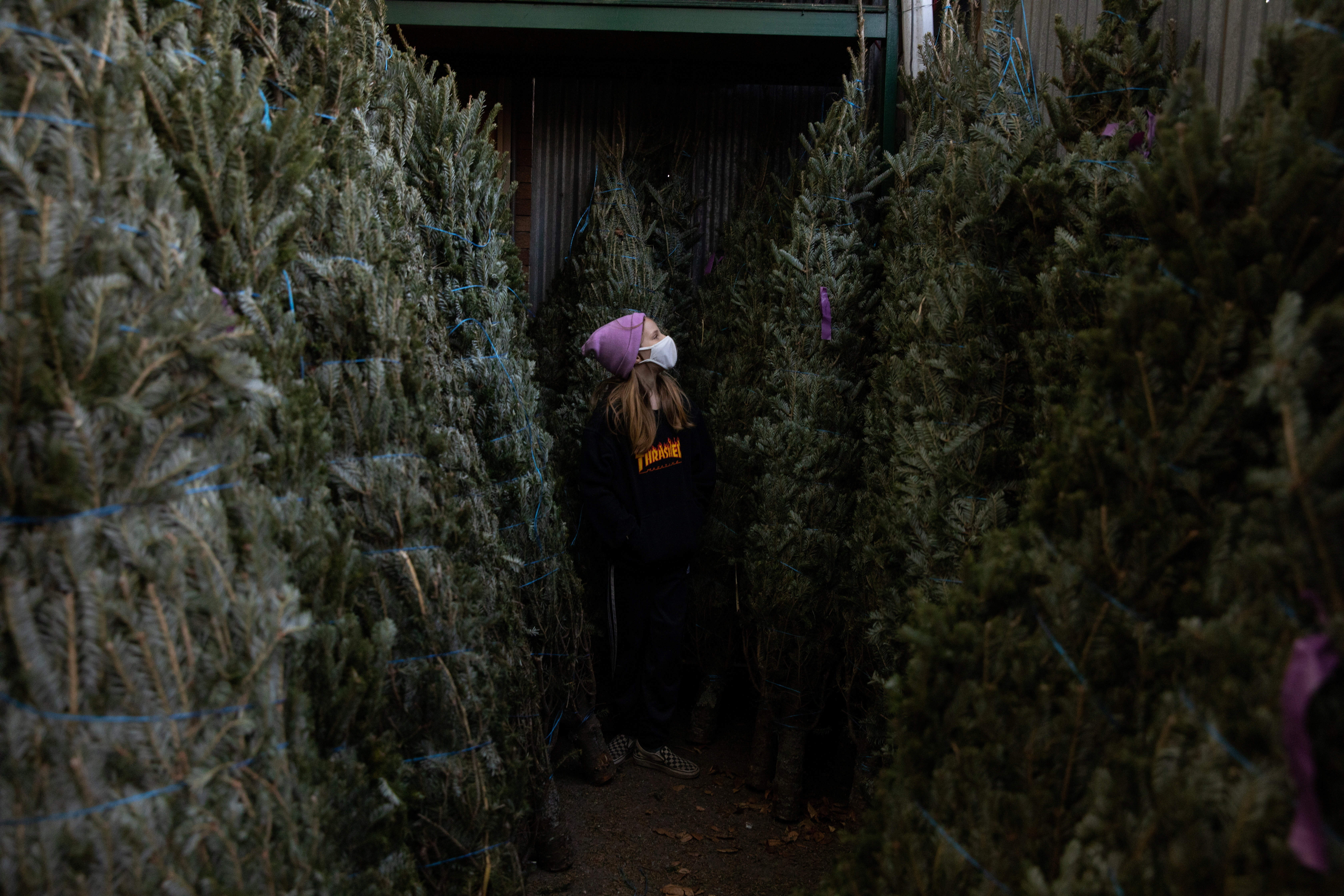 Lydia Hassebroek looks at Christmas trees as the global outbreak of the coronavirus disease (COVID-19) continues, in Brooklyn, New York, U.S., December 6, 2020. REUTERS/Caitlin Ochs - RC23IK9DXDPB