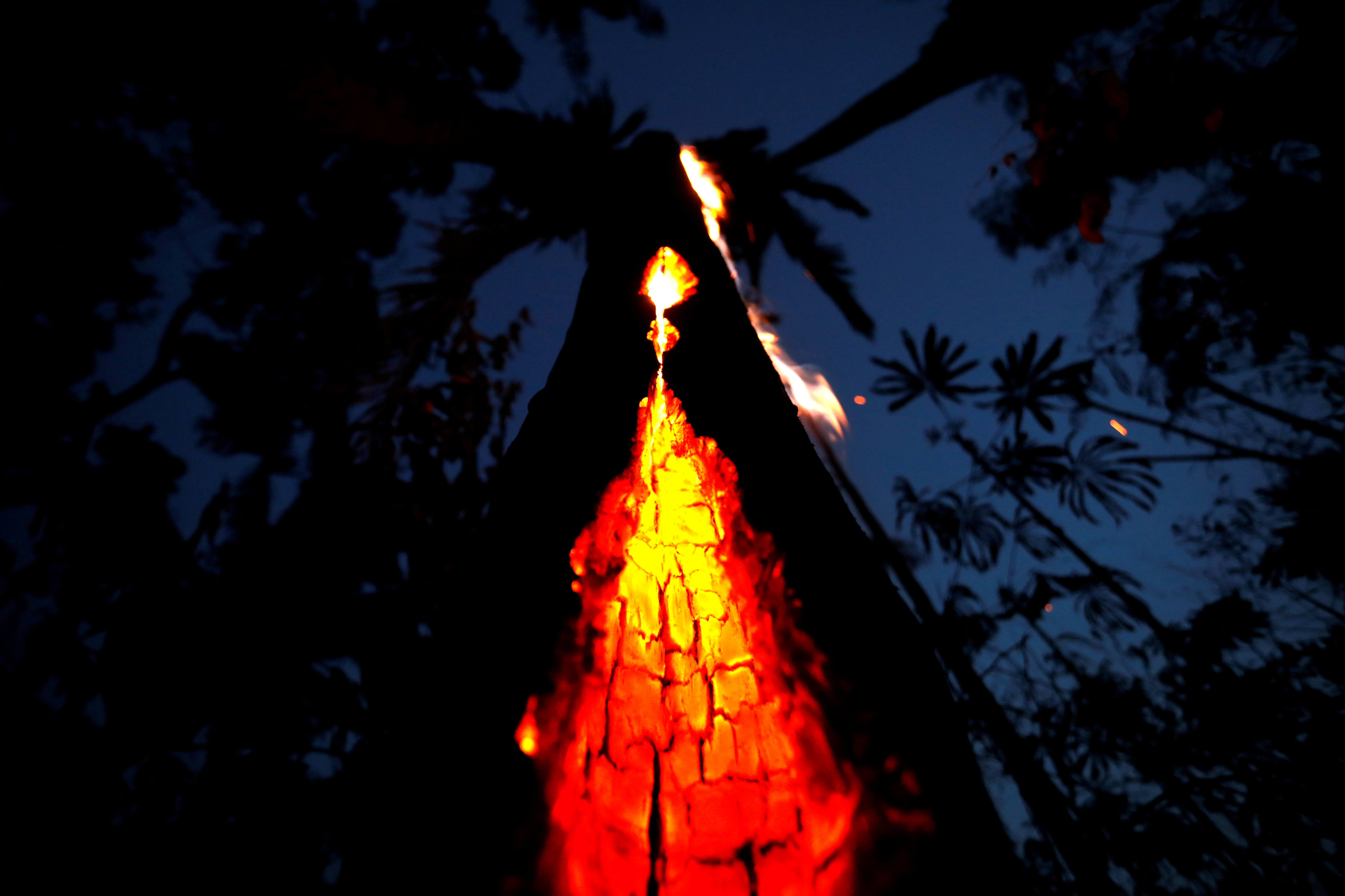 A burning tree is seen during a fire in an area of the Amazon rainforest in Itapua do Oeste, Rondonia State, Brazil, September 11, 2019. Picture taken September 11, 2019. REUTERS/Bruno Kelly     TPX IMAGES OF THE DAY - RC19C12718A0