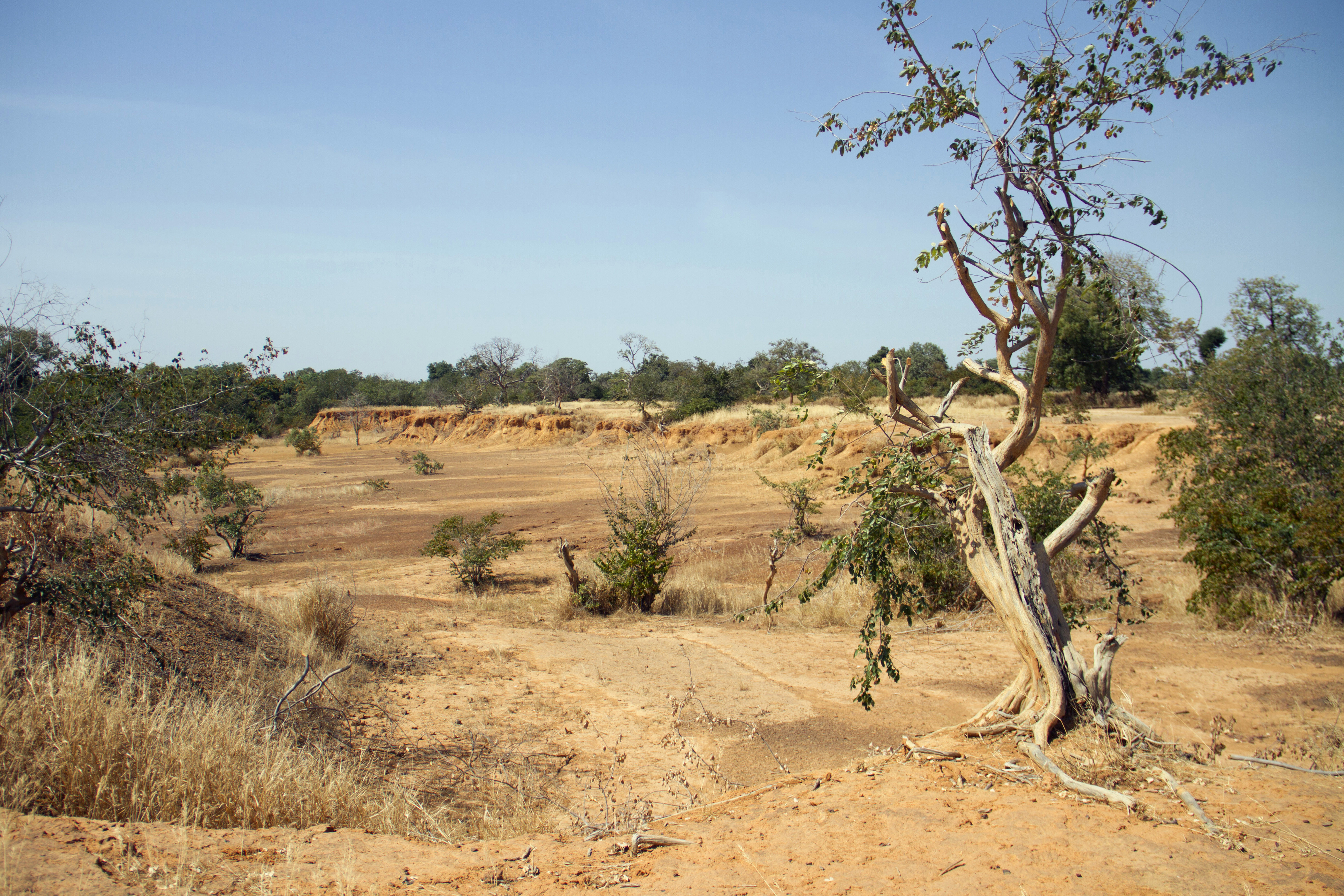 Parched land is pictured around the Lake Wegnia, in Sahel region of Koulikoro, Mali November 22, 2019. Picture taken November 22, 2019. REUTERS/Arouna Sissoko - RC2IJD9CY3FT