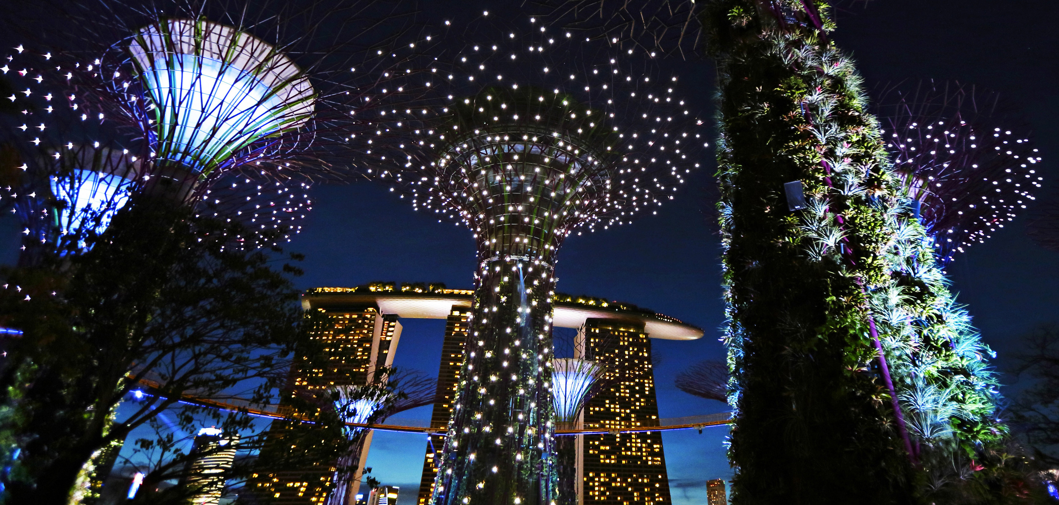 The giant concrete structures of the Supertree Grove are illuminated against the dusk sky at the newly opened Gardens by the Bay in Singapore July 8, 2012. The 101-hectare gardens, situated at the heart of Singapore's Marine Bay, cost S$1 billion ($786 million) to build and houses over a quarter of a million rare plants, according to the park. REUTERS/Tim Chong (SINGAPORE - Tags: ENVIRONMENT CITYSPACE SOCIETY) - GM1E8781R2M01