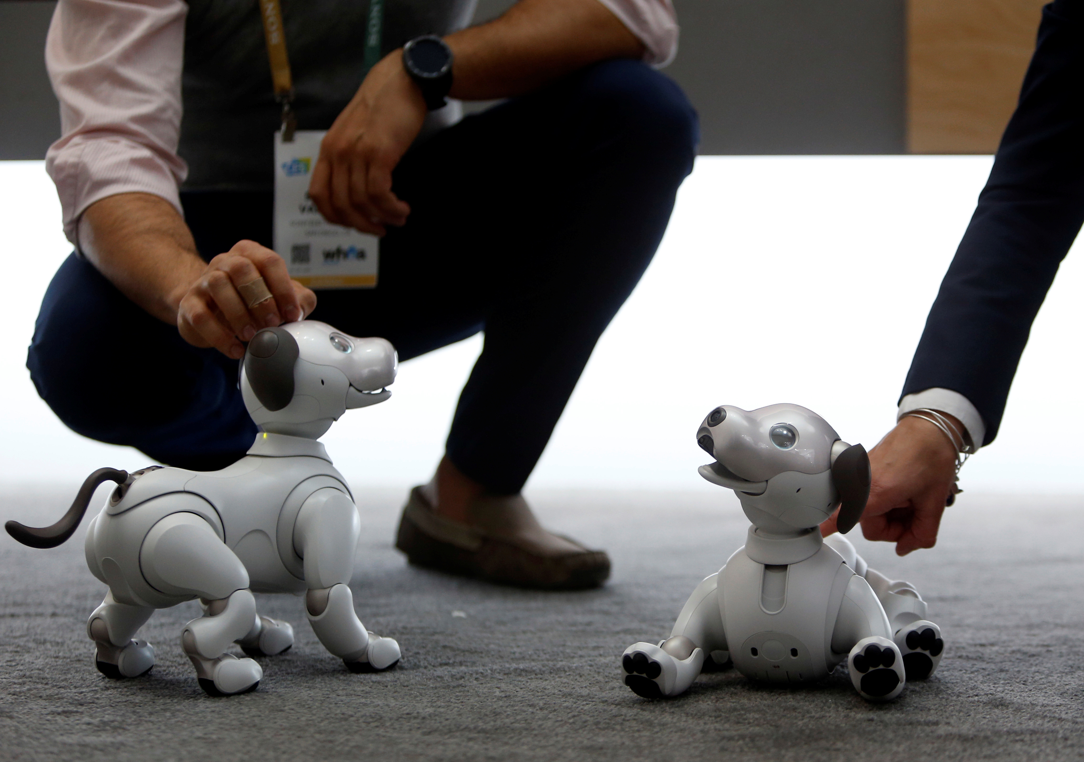 Sony's Aibo robotic dogs are displayed during the 2018 CES in Las Vegas, Nevada, U.S. January 8, 2018. REUTERS/Steve Marcus - RC1931AEAB10