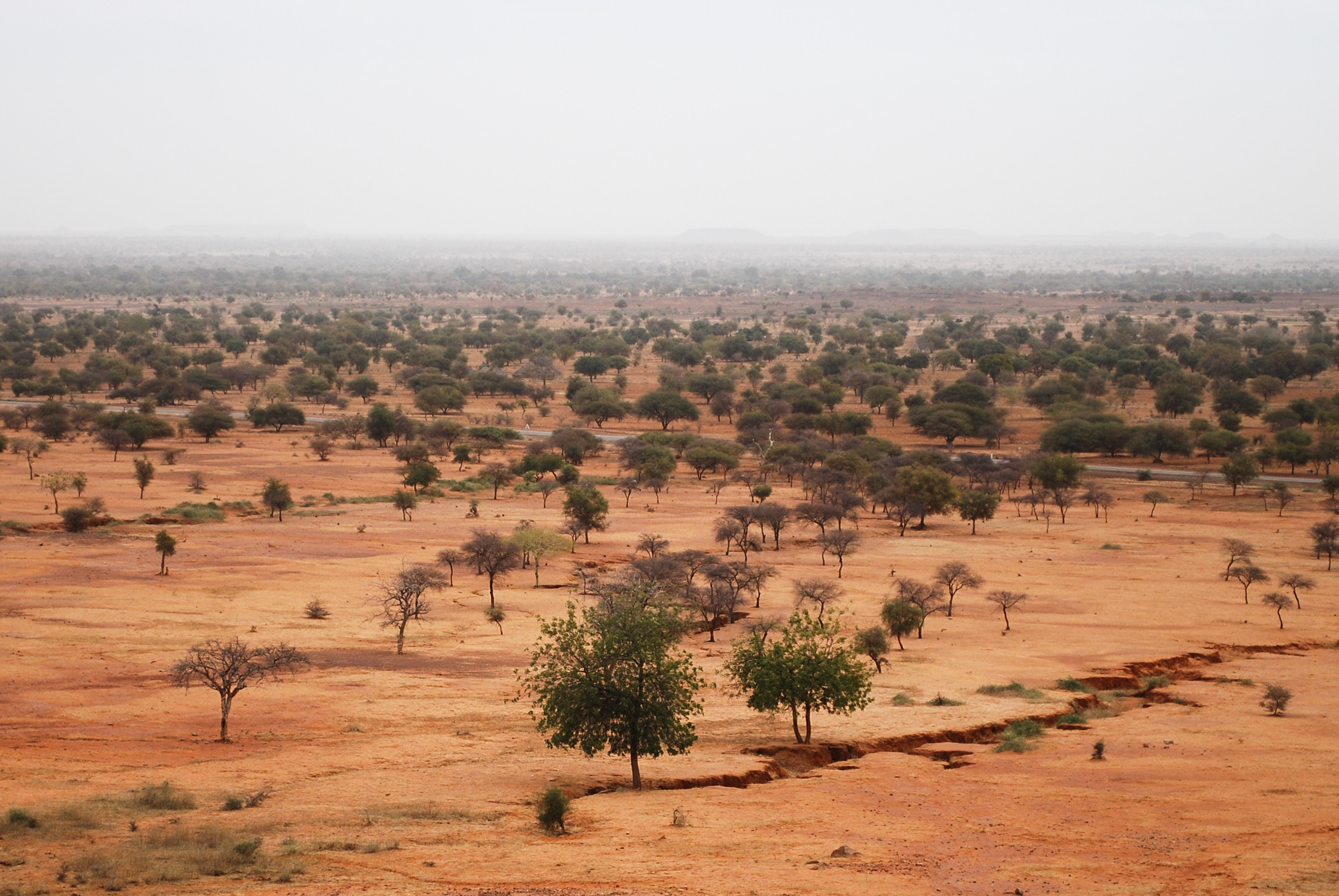 Aerial image of the Sahel, which is a transition zone between the arid north and the tropical green forest that borders the maritime coast.