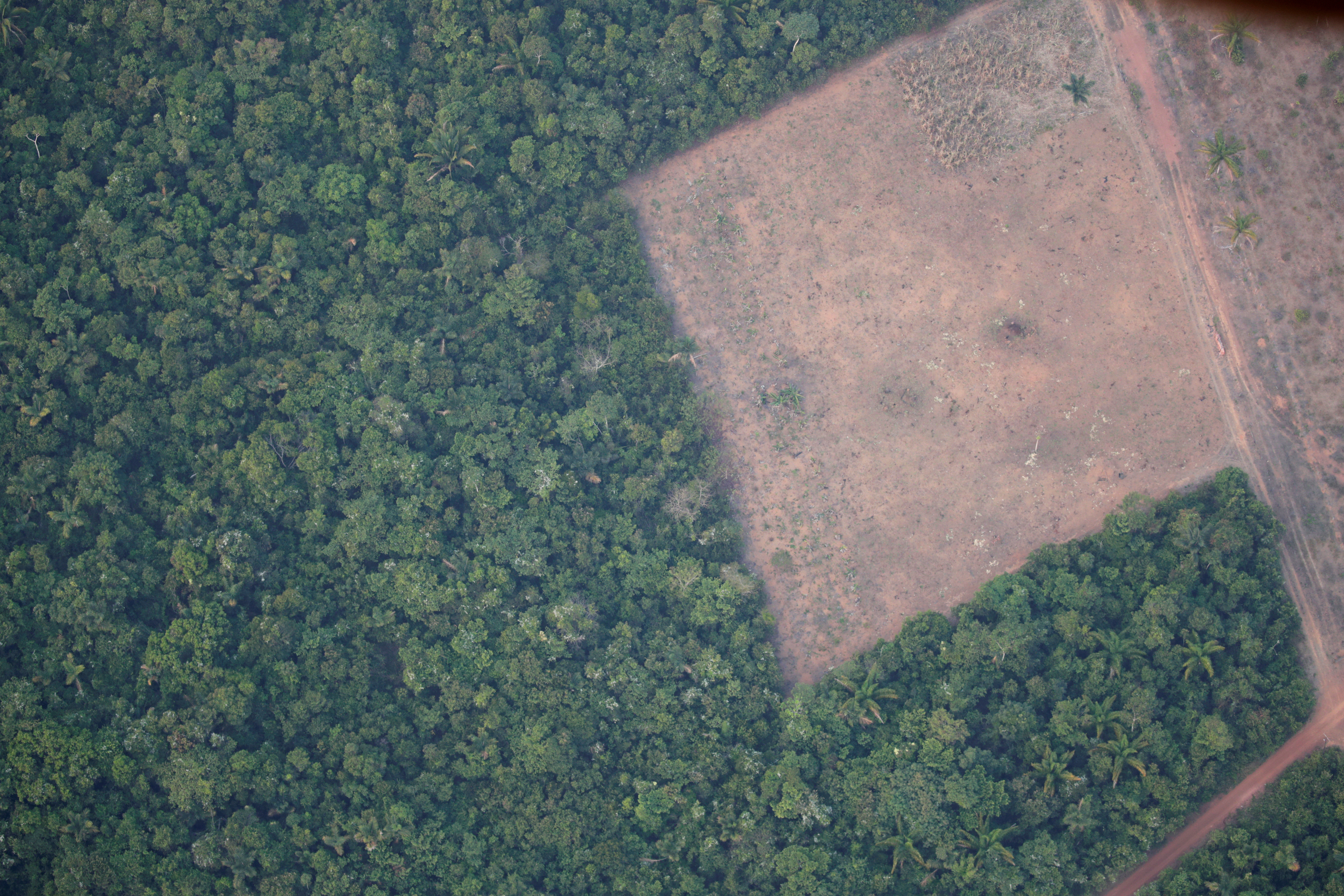 An aerial view shows a deforested plot of the Amazon near Porto Velho, Rondonia State, Brazil