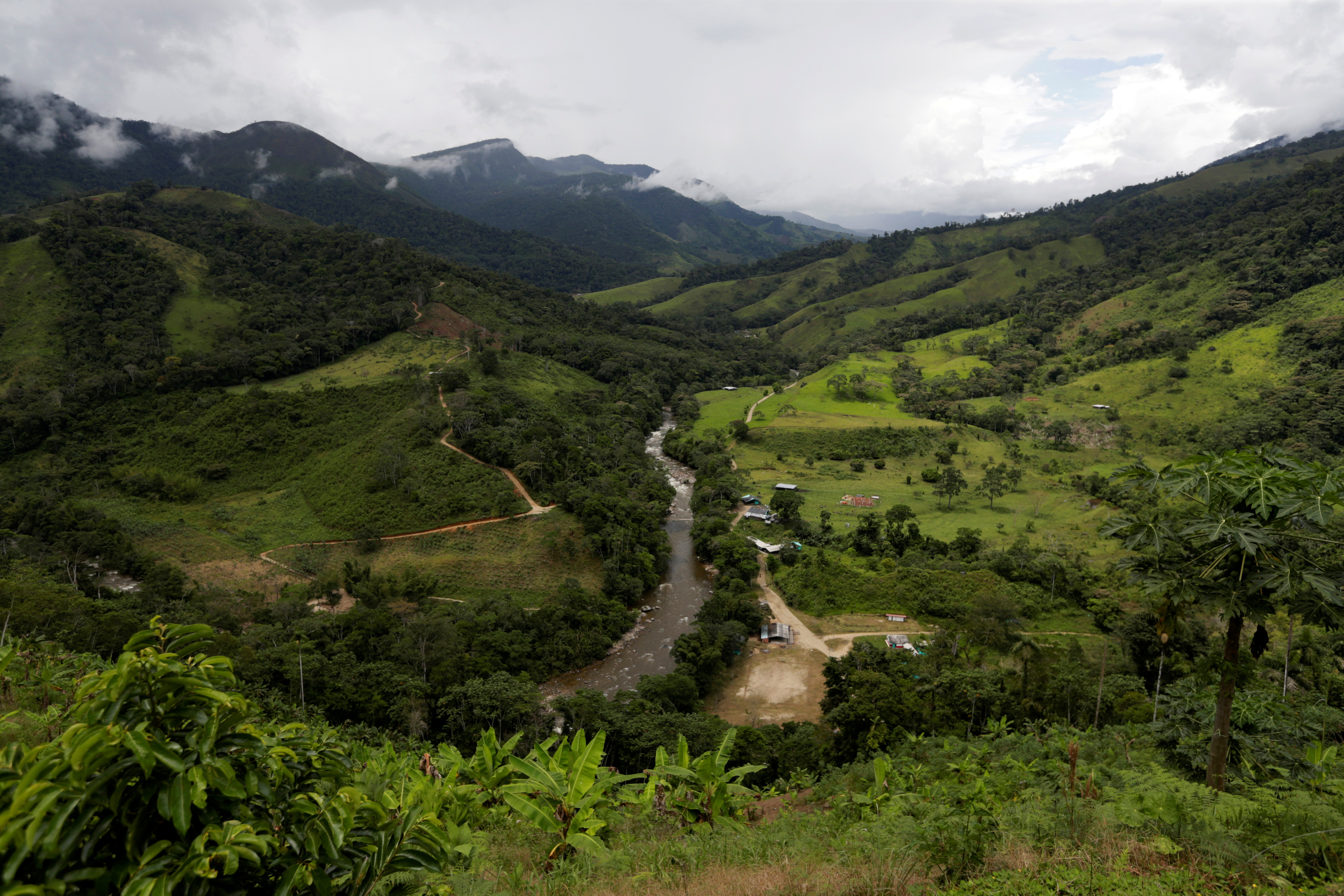View of the river Pato in Miravalle, Colombia November 9, 2018. Picture taken November 9, 2018. REUTERS/Luisa Gonzalez - RC19C1EC2300