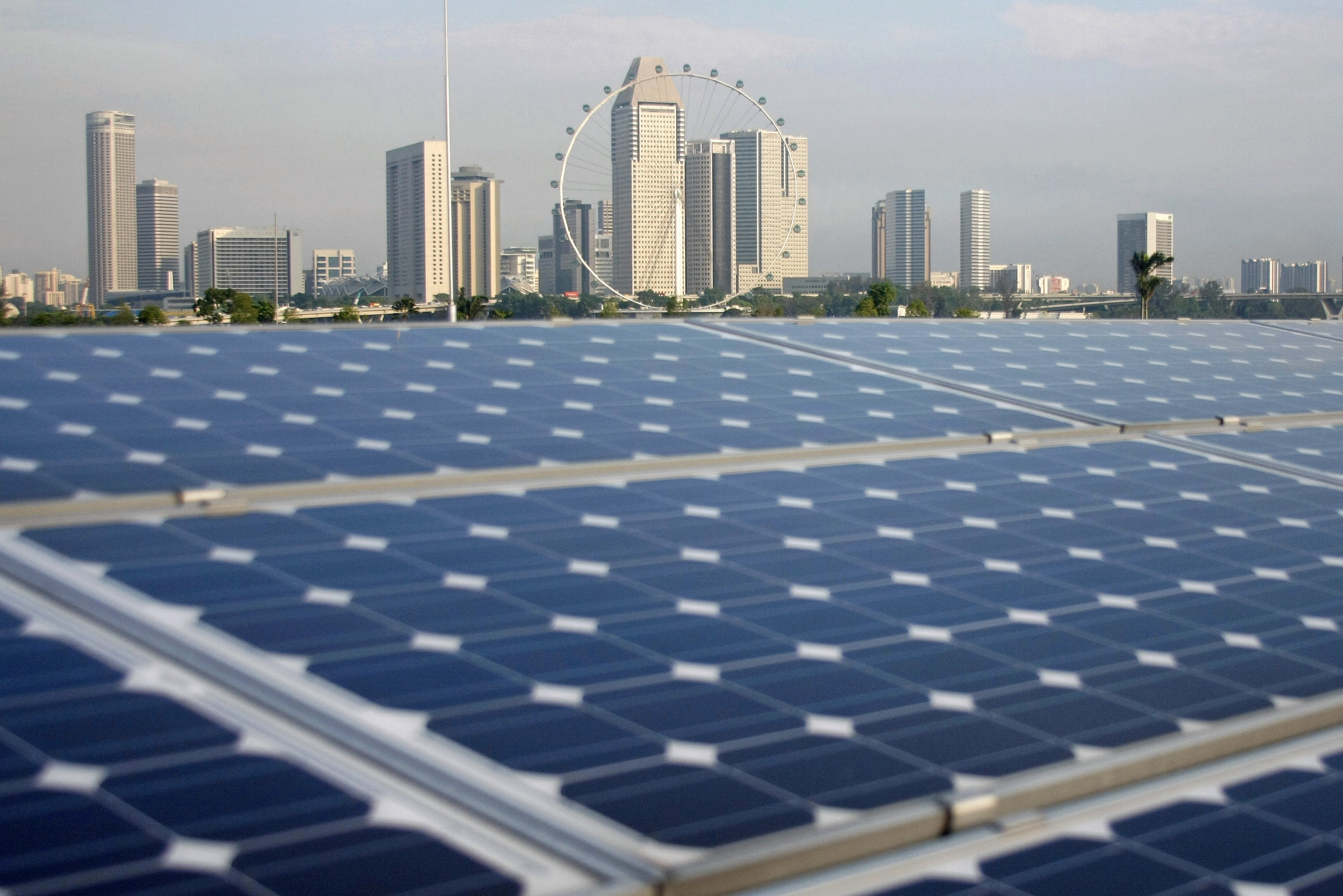 Solar panels are pictured on the Marina Barrage building, with the Singapore Flyer observation wheel and office and hotel buildings pictured in the background, in Singapore March 25, 2009.