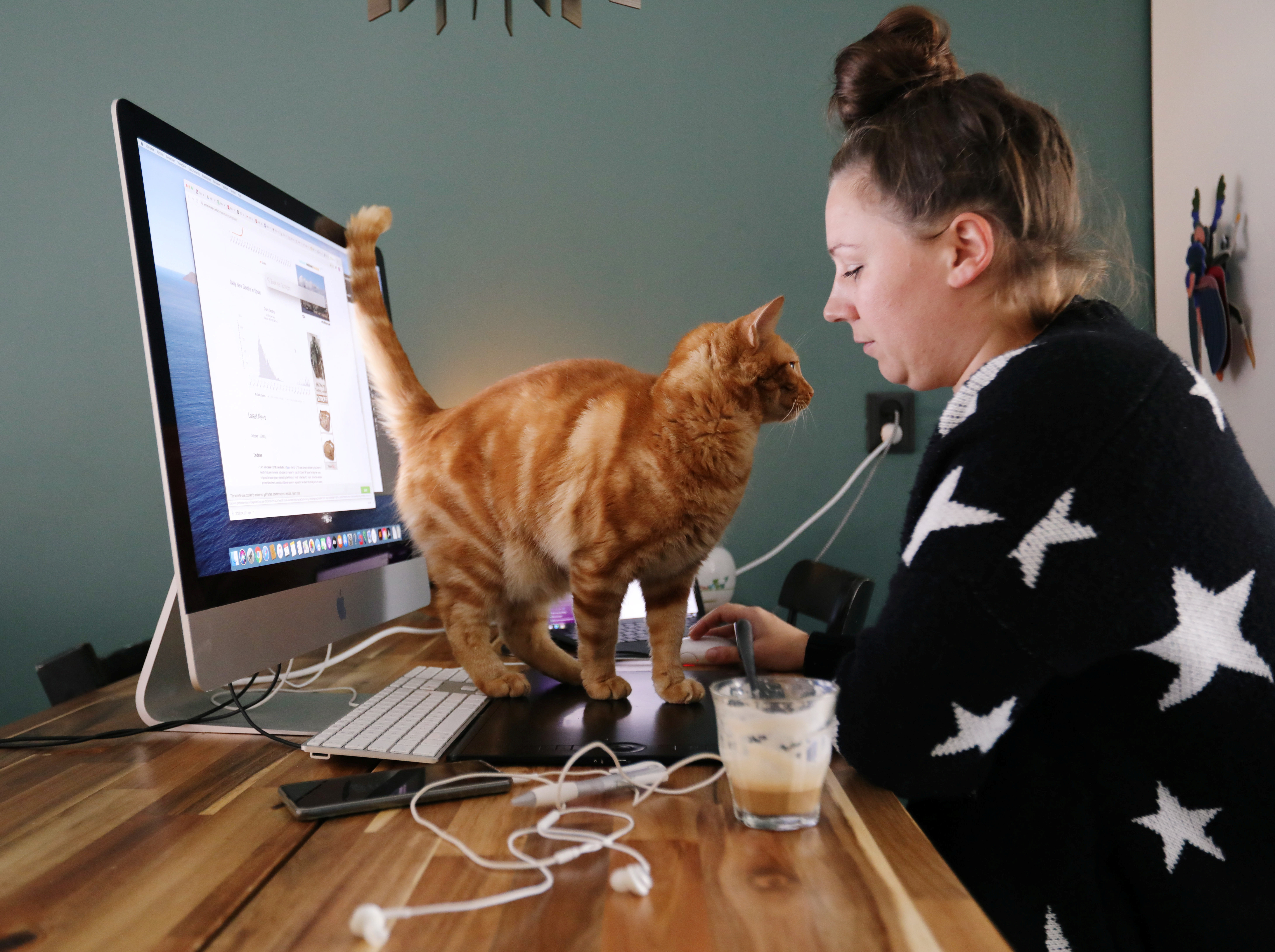 a woman works at her computer at home with a cat on her keyboard