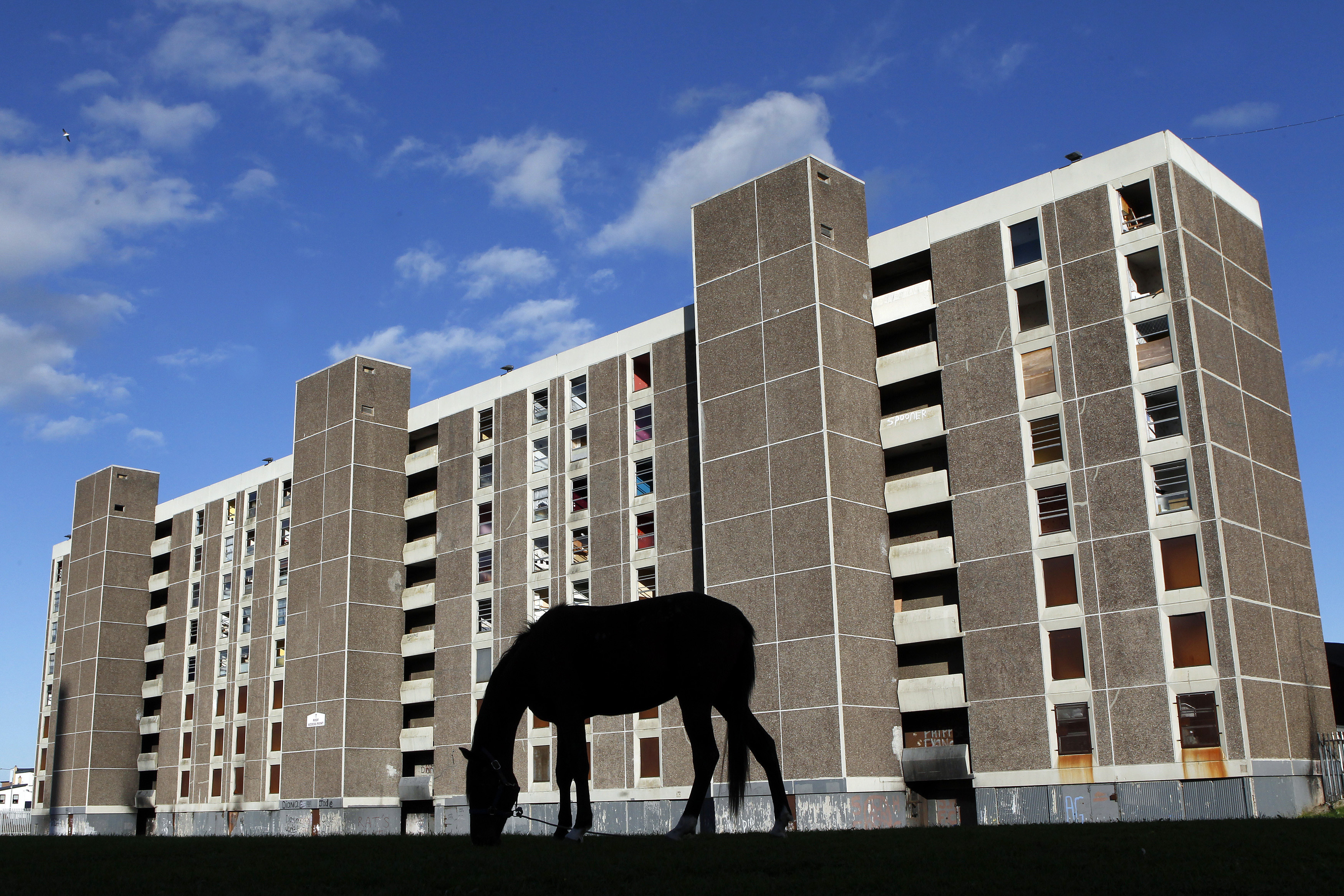 A horse grazes in front of derelict flats in the Ballymun area of North Dublin, October 1, 2010. Ireland's brief economic upturn showed further signs of petering out on Friday, with weak manufacturing and retail sales data giving under-fire Prime Minister Brian Cowen little comfort ahead of yet another round of cuts. REUTERS/Cathal McNaughton (IRELAND - Tags: POLITICS BUSINESS SOCIETY IMAGES OF THE DAY) - GM1E6A204CZ01