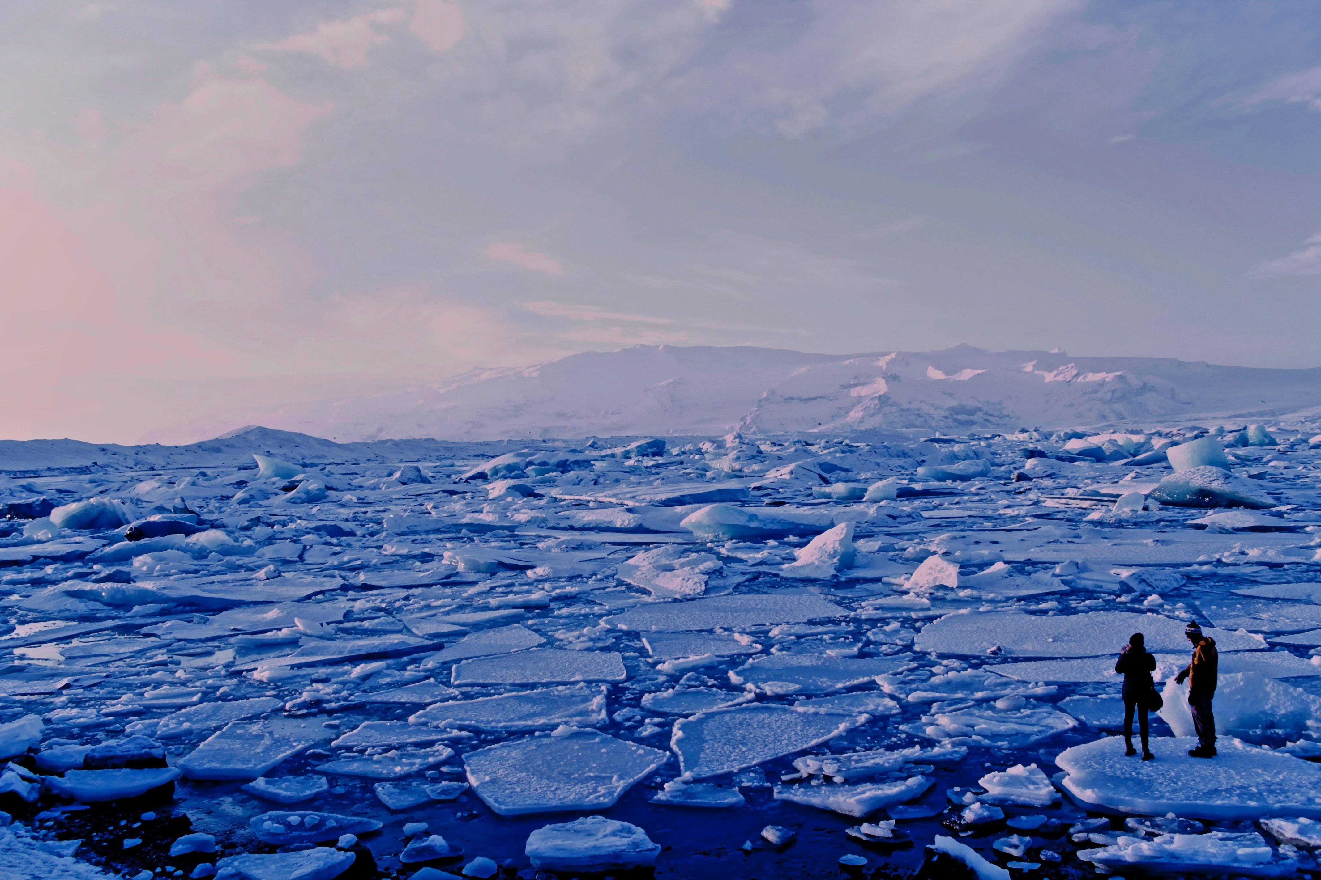 Arctic ice melting into the sea.