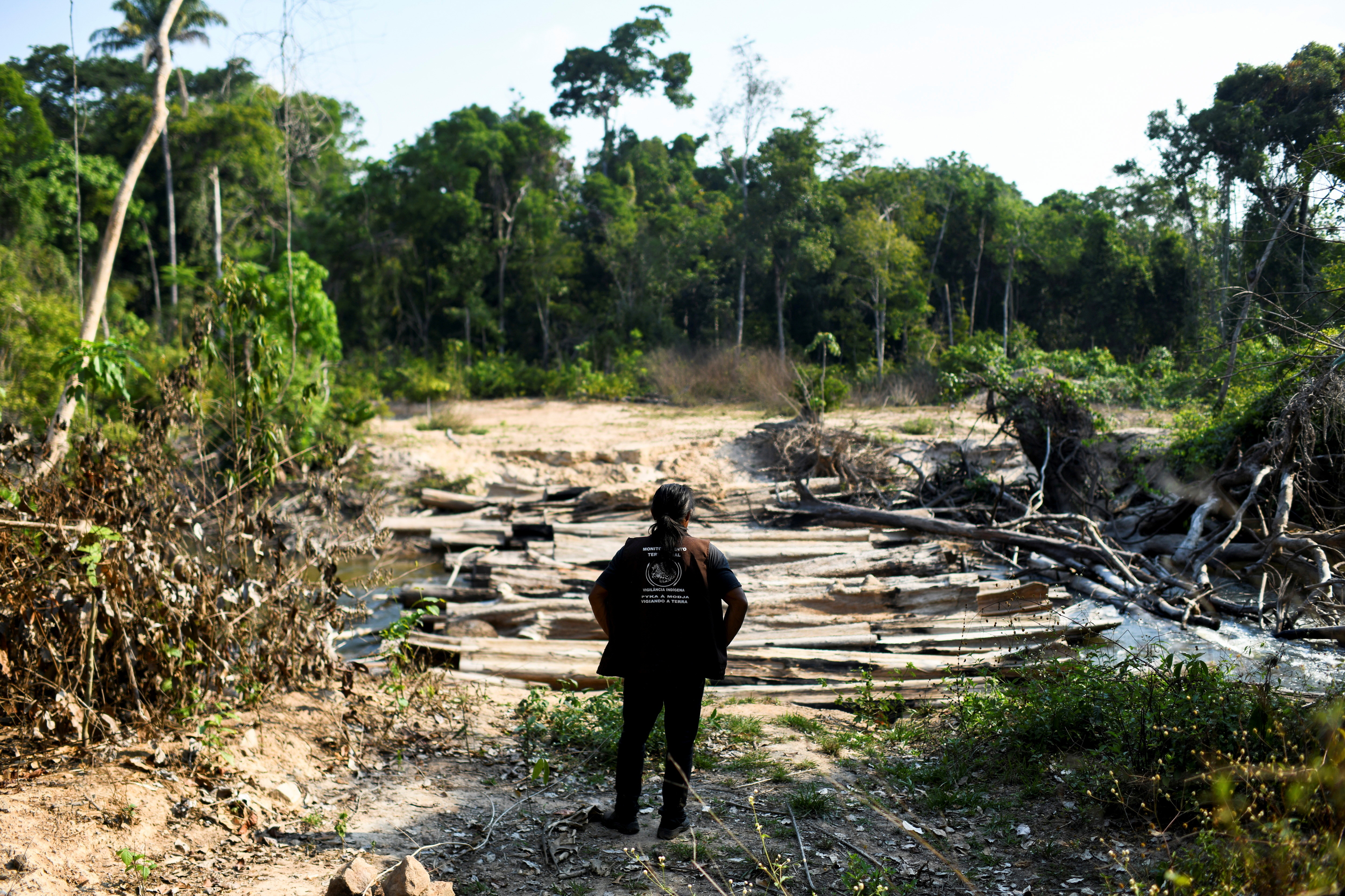 Pahnin Mekragnotire, a 40-years-old indigenous man of the Kayapo tribe, observes logs left by loggers during a surveillance patrol the Menkragnoti Indigenous Land to defend their territory against attacks by loggers and miners at the Krimej village in southwestern Para state, Brazil