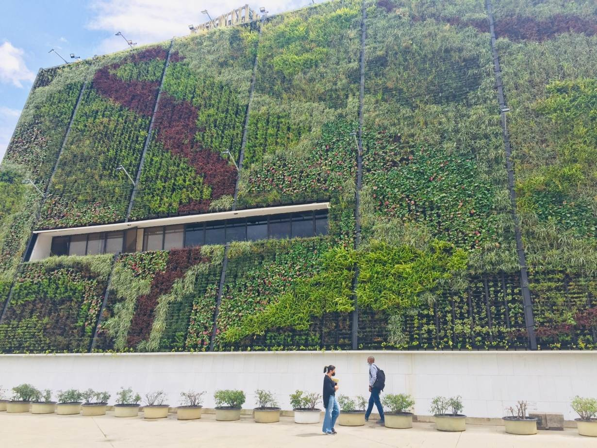 this is a vertical garden on a city hall building in Medellin, Colombia, July 16 2021