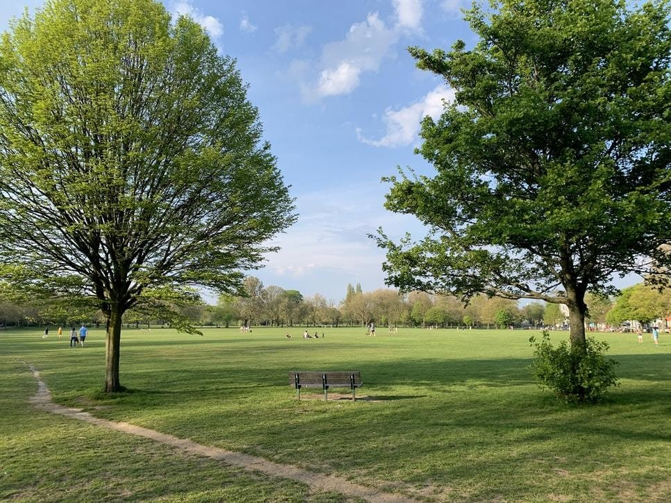 image of a green space in London