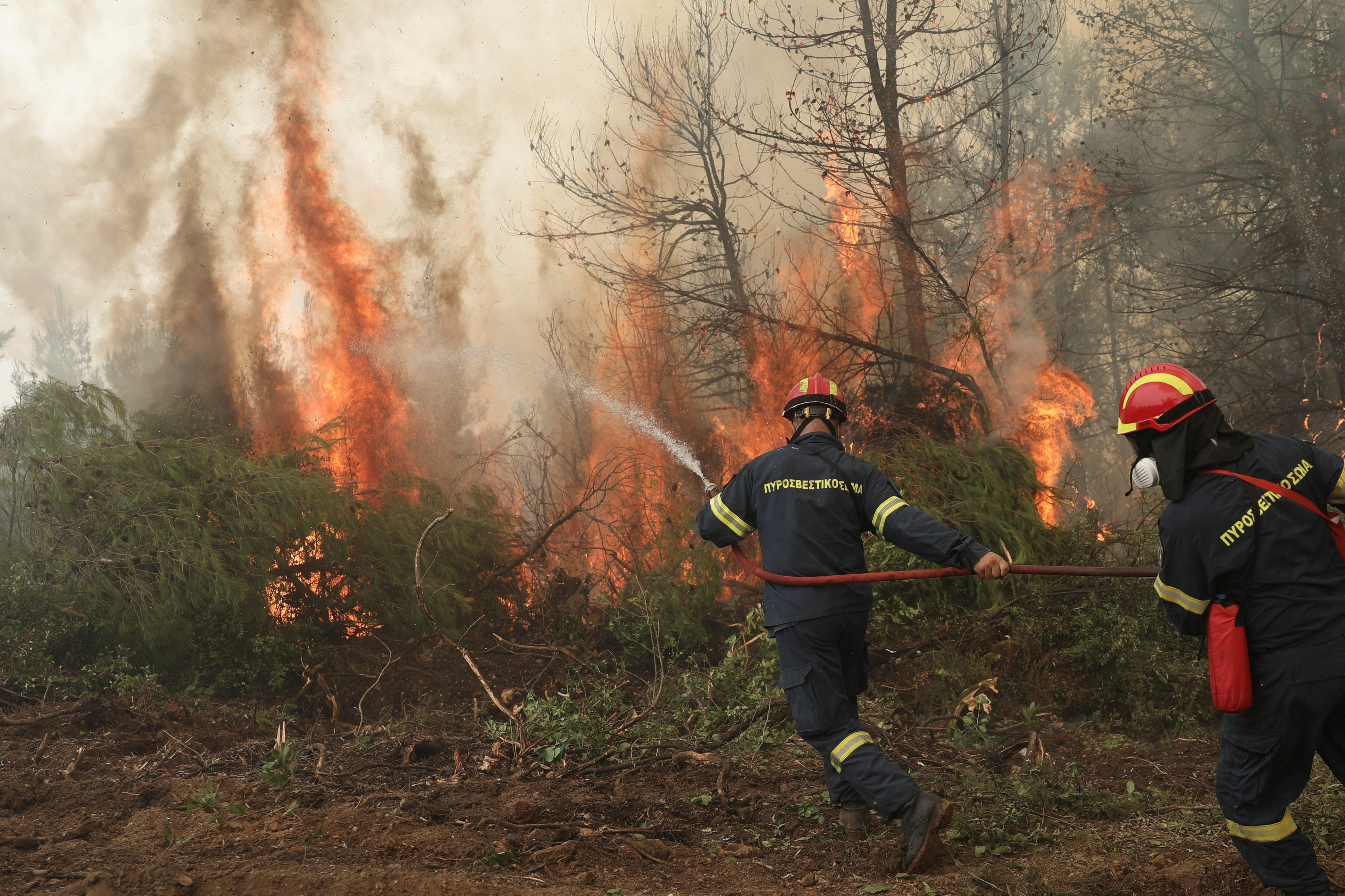 Firefighters try to extinguish a fire in the village of Avgaria, on the island of Evia, Greece, August 10, 2021.