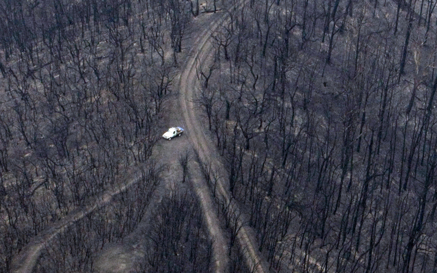 A vehicle is seen near the remains of a forest destroyed by bushfire.