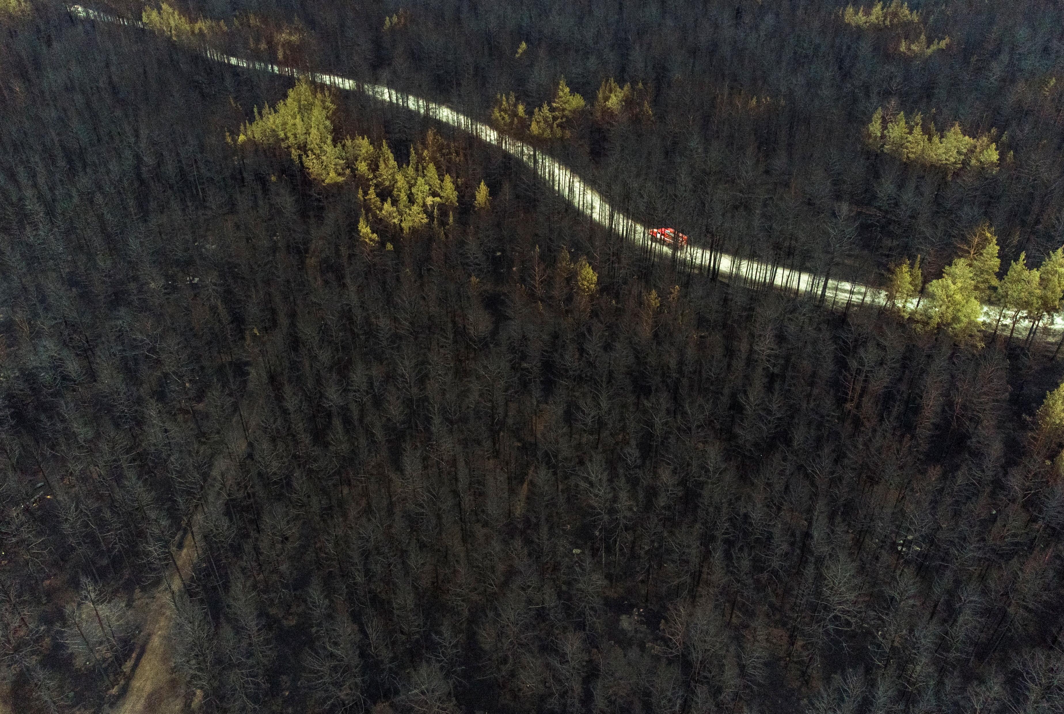 a fire truck drives across a forest burnt by wildfire towards to the sattelment of Zapasnoye in Chelyabinsk Region, Russia