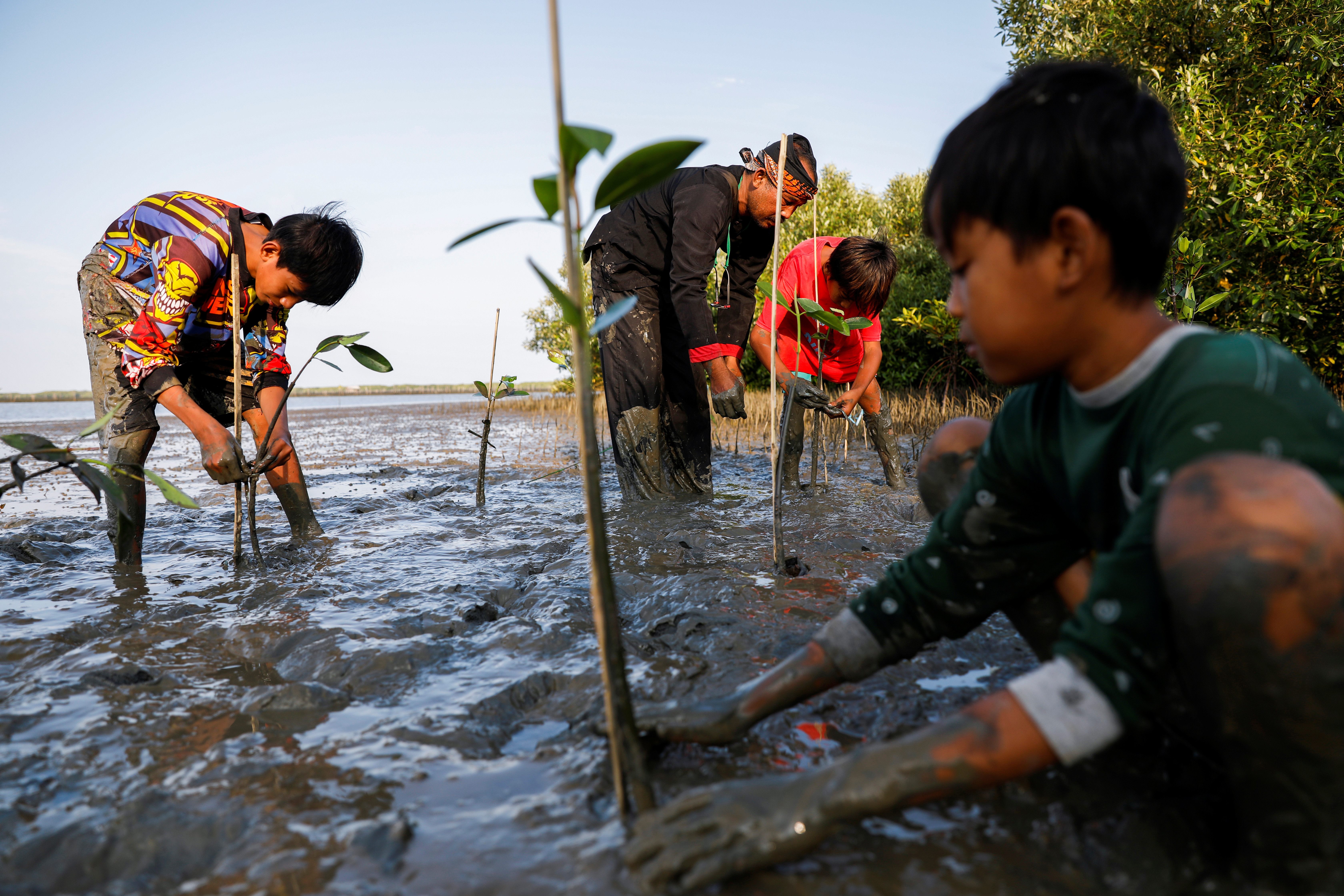 Samsudin, 50, plants mangrove trees with local children at Tiris beach in Pabeanilir village, Indramayu regency, West Java province, Indonesia.
