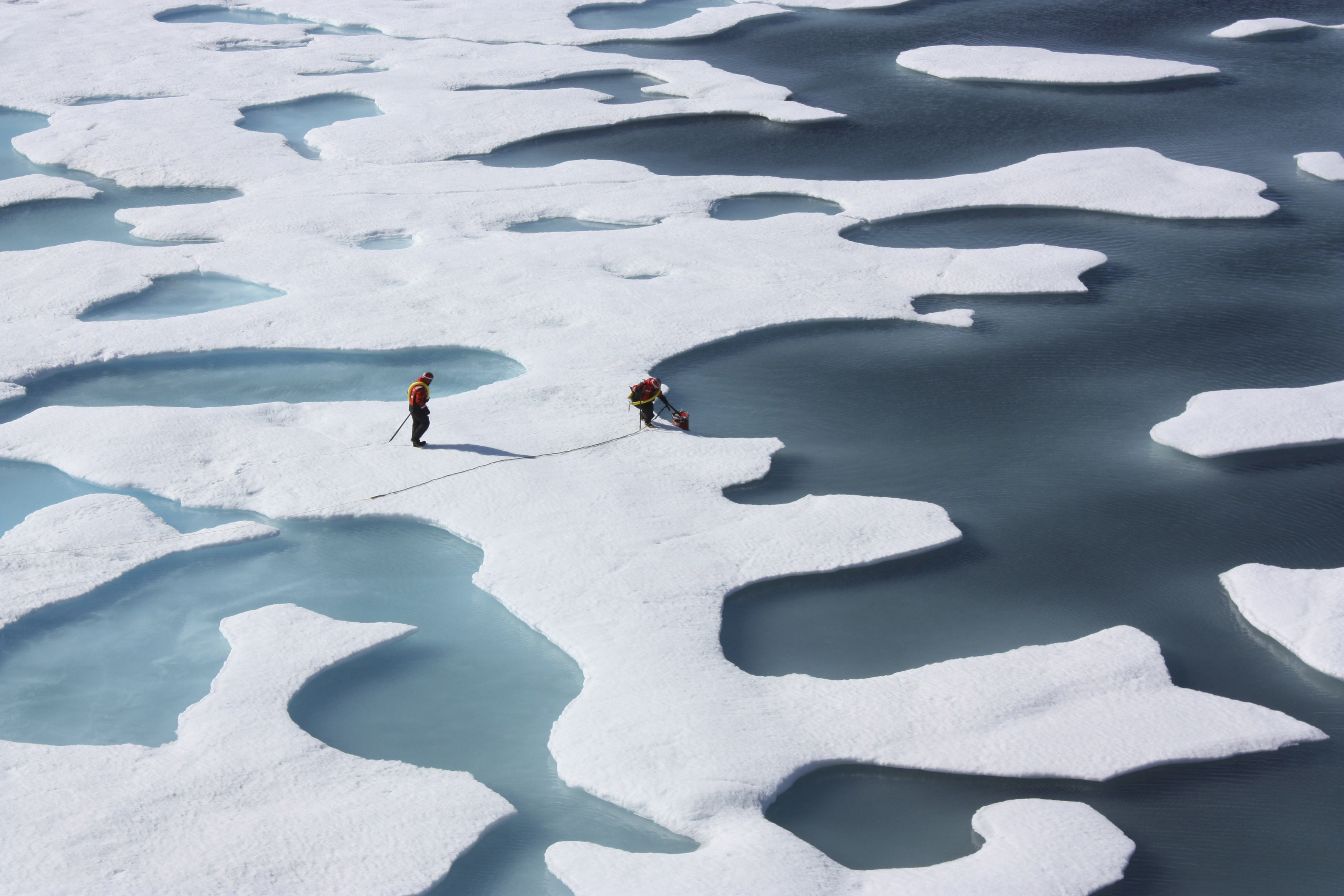 researchers stand on an icy bit of ocean