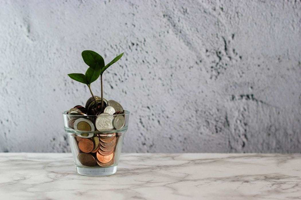 Image of coins with a plant growing out of them
