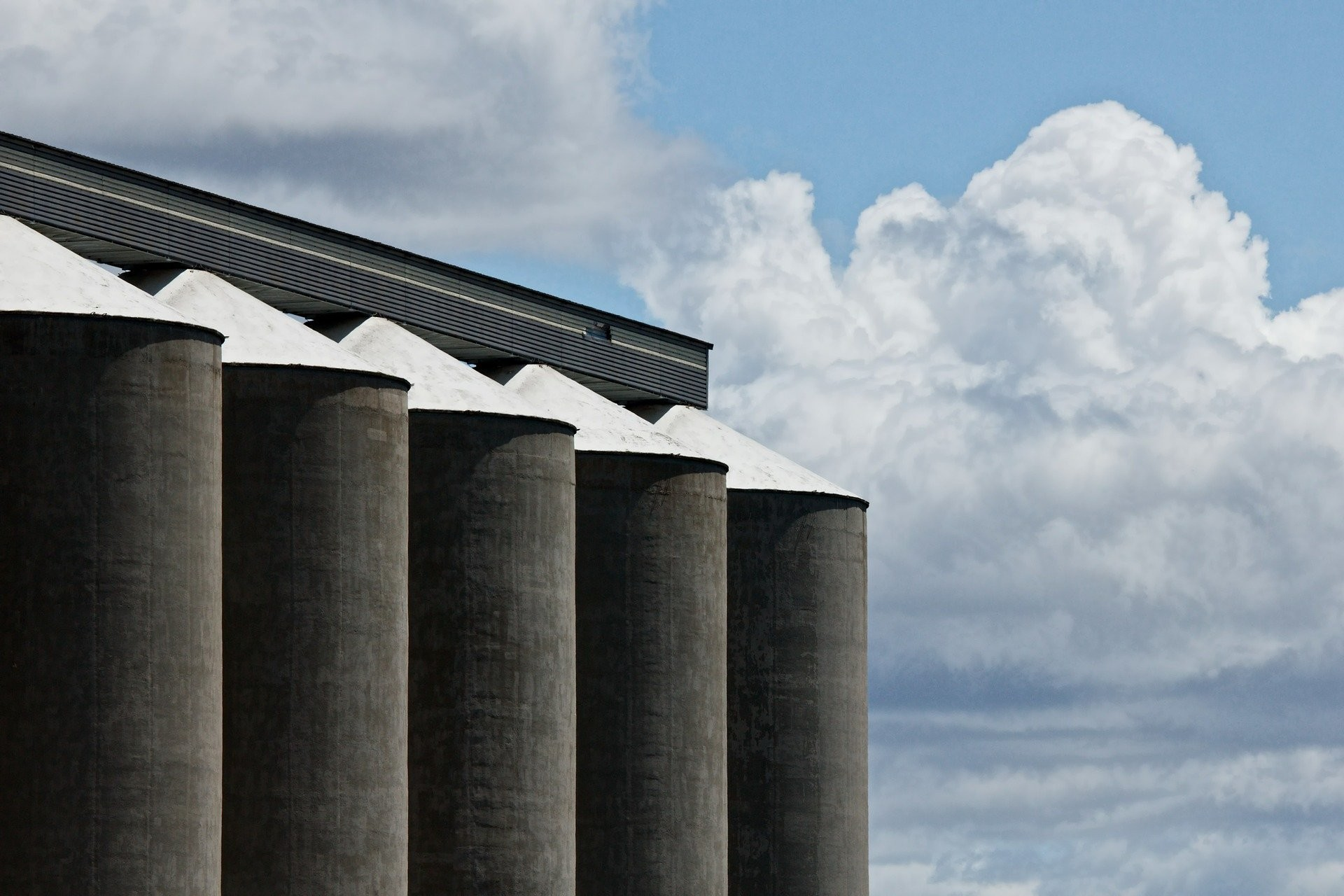 Silos can be bad for our health