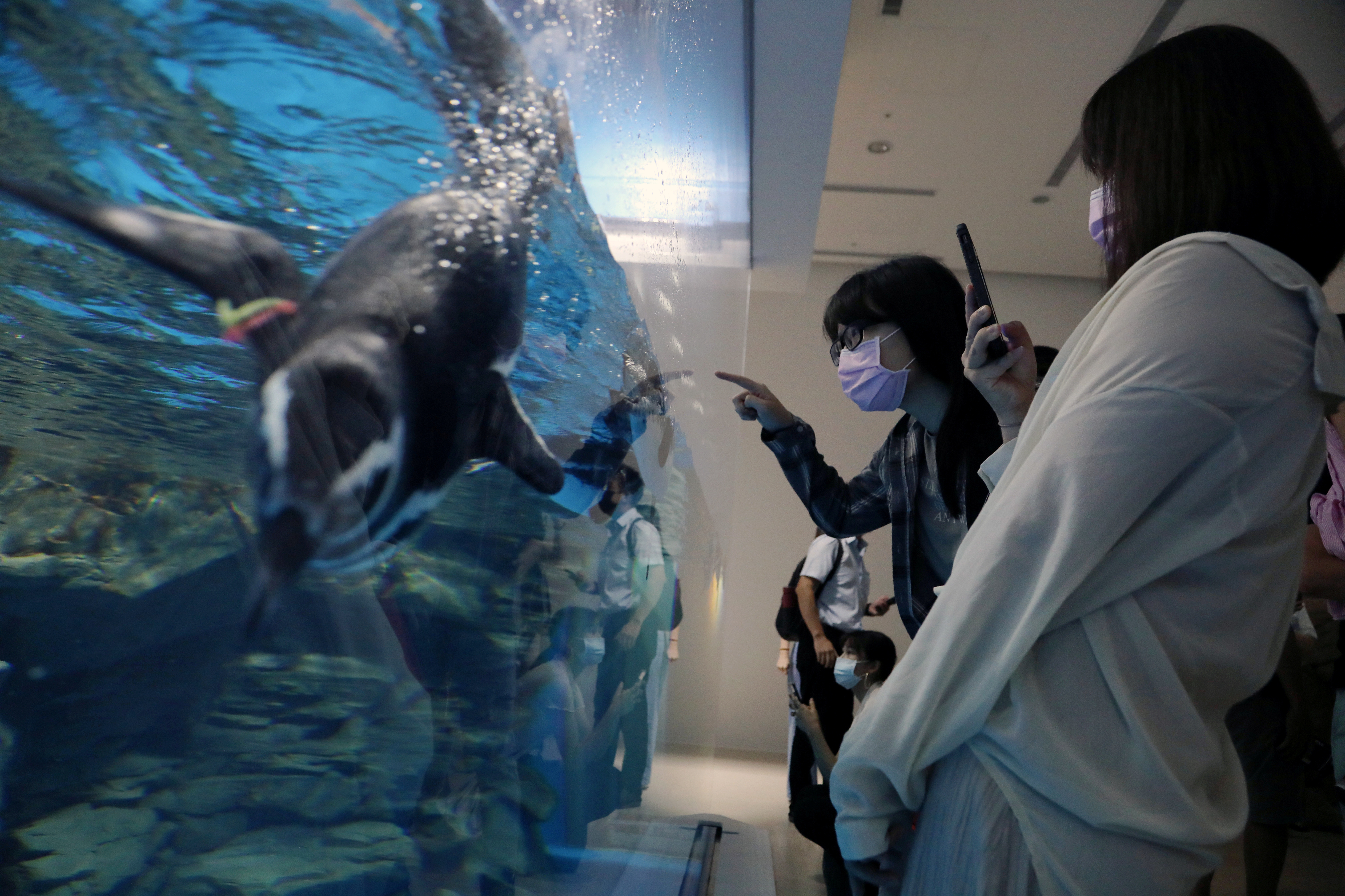 Visitors tour the Xpark Aquarium on its opening day while wearing protective masks to prevent the spread of the coronavirus disease (COVID-19) in Taoyuan, Taiwan, August 7, 2020. REUTERS/Ann Wang - RC2X8I93N8ZB
