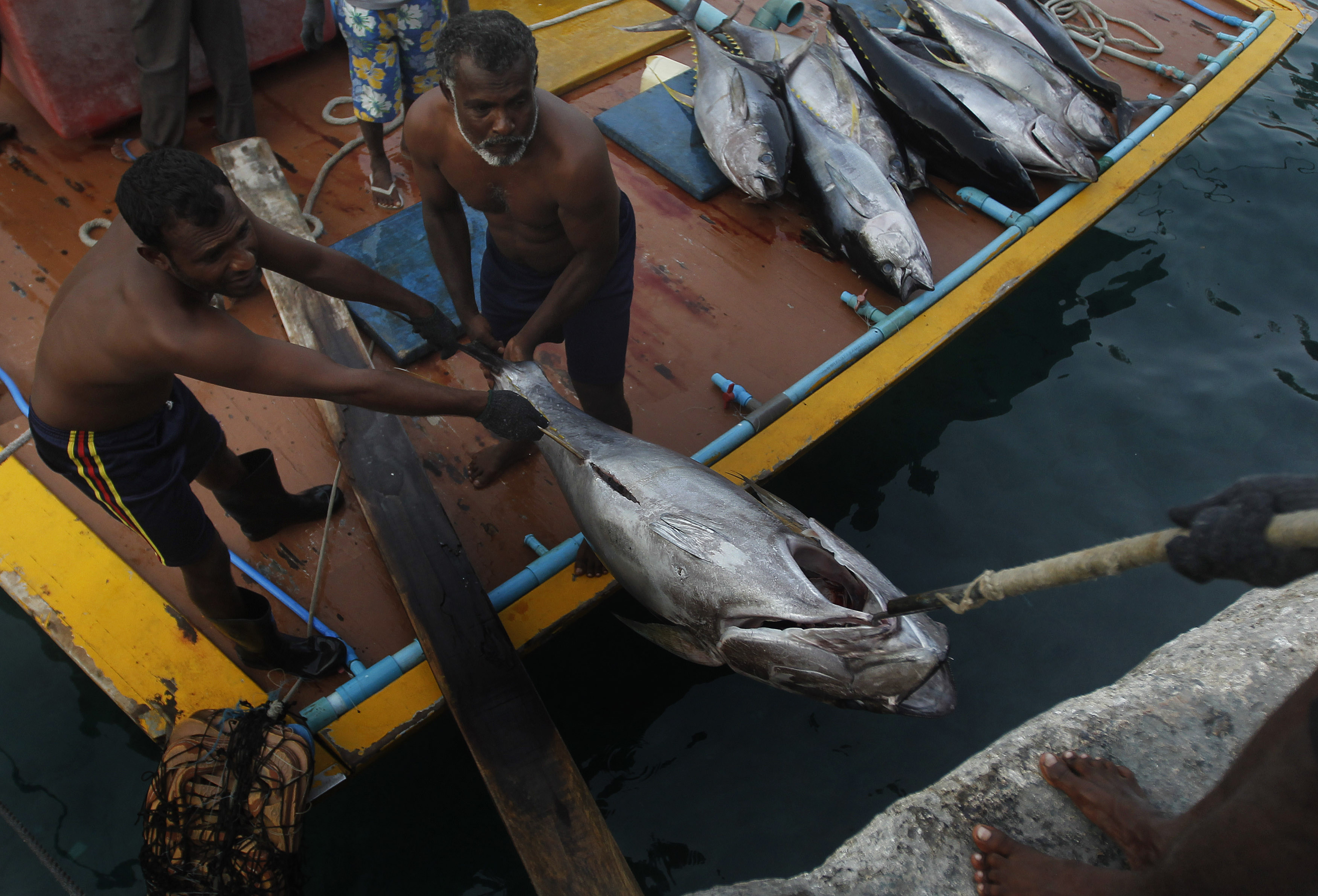 Fishermen in the Maldives, one of the small island developing states liable to be hit hardest by climate change.