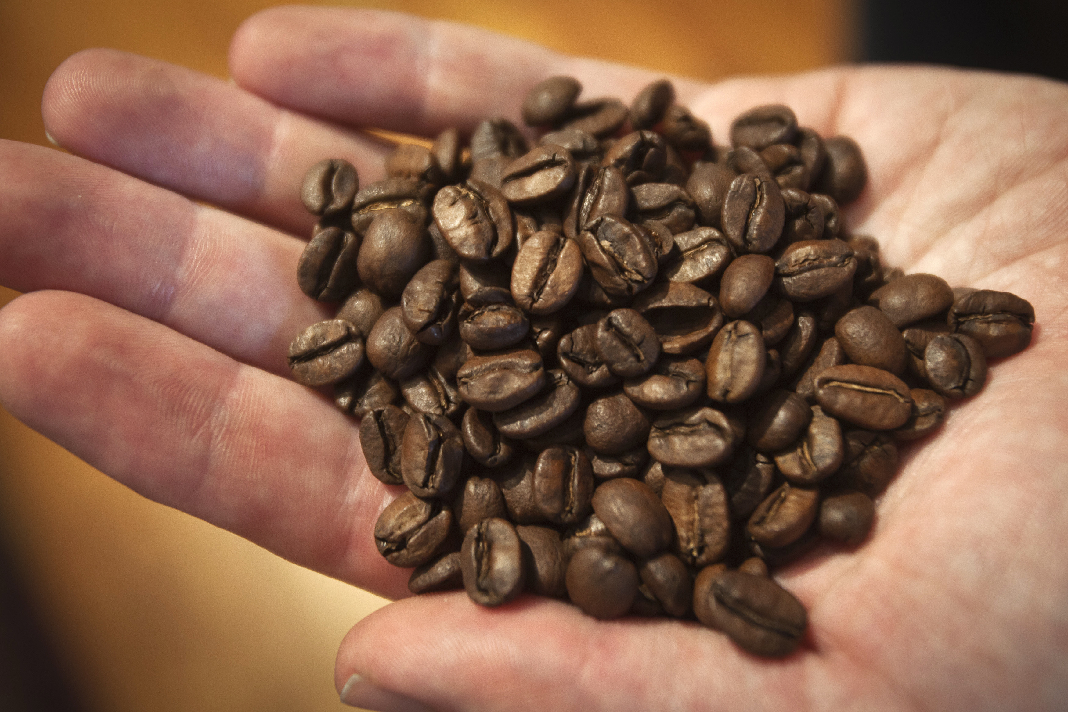 From crop to cup: How coffee travels through its supply chain